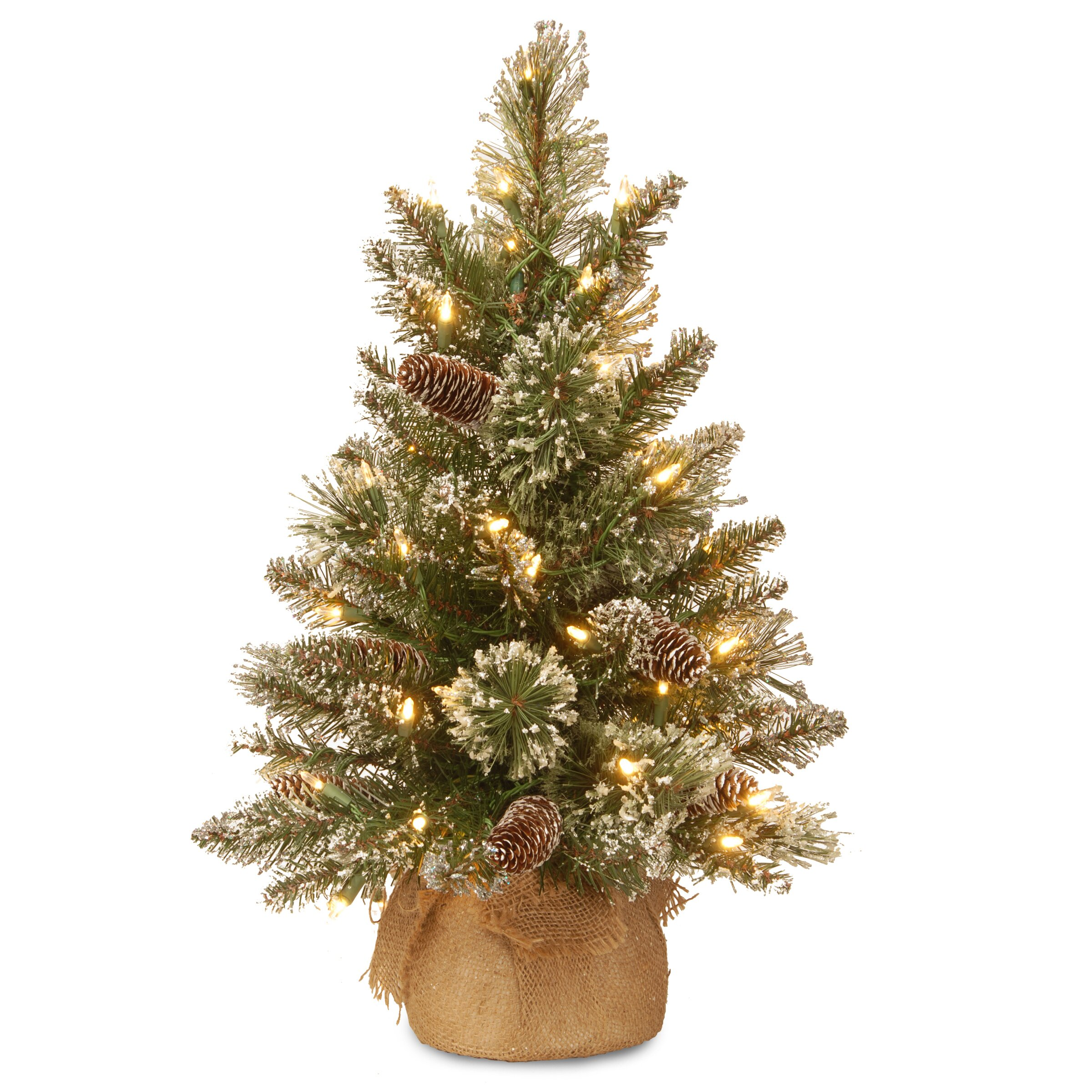 Green And White Christmas Tree: National Tree Co. Glittery Bristle 2' Green Pine