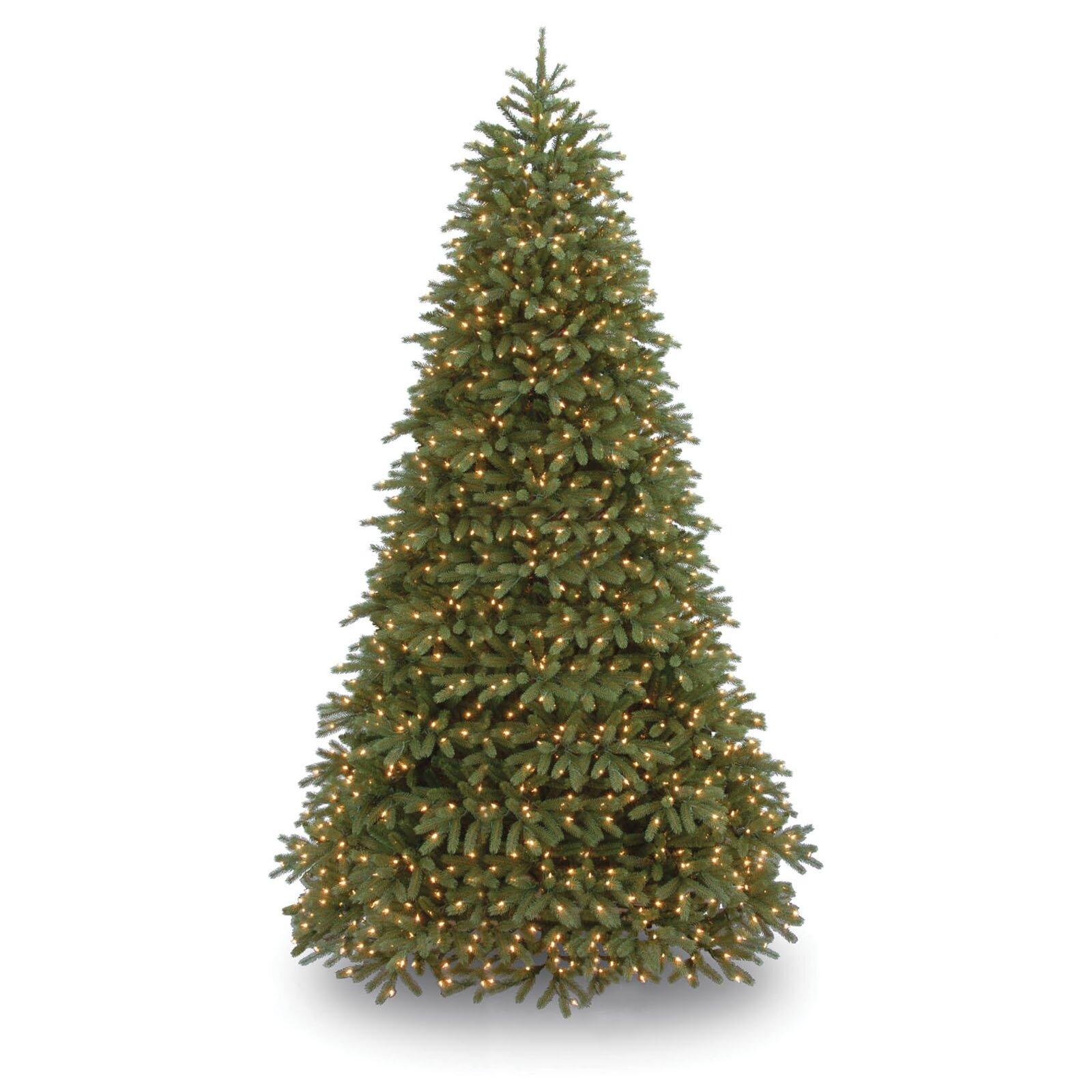 Christmas Lights Jersey: National Tree Co. Jersey Fraser Fir 9' Green Medium