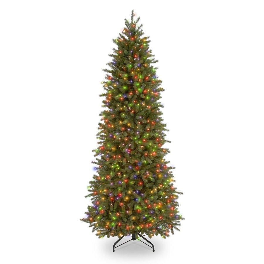Fraser Fir Christmas Trees: National Tree Co. Jersey Fraser Fir 7.5' Green Pencil Slim