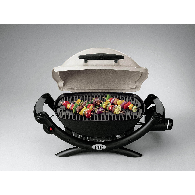 weber q series 1000 lp titanium portable gas grill reviews wayfair. Black Bedroom Furniture Sets. Home Design Ideas