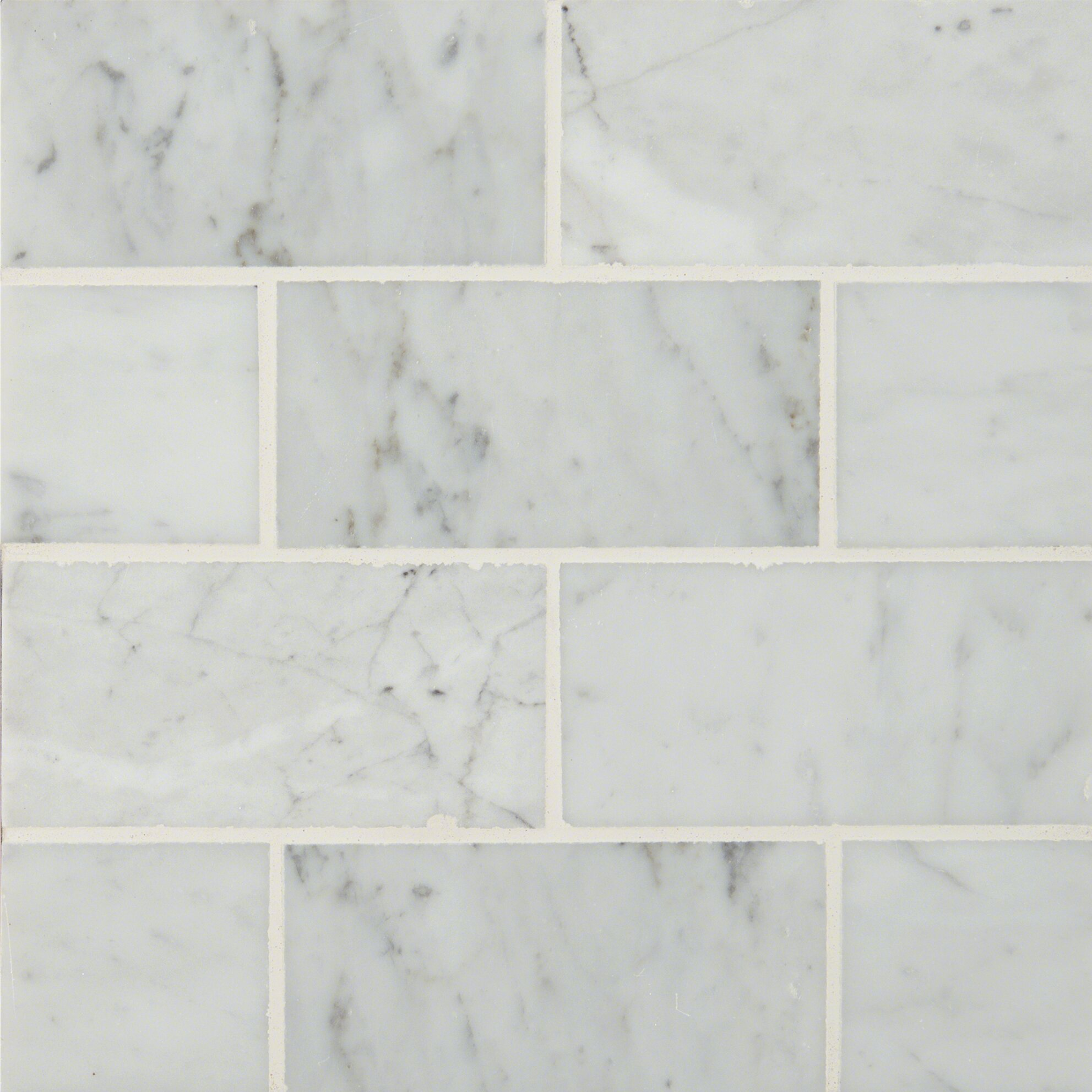 Msi 3 Quot X 6 Quot Polished Marble Tile In Carrara White
