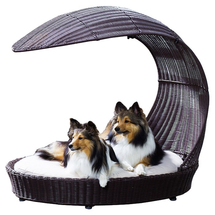 Dog Bed For Winter Camping