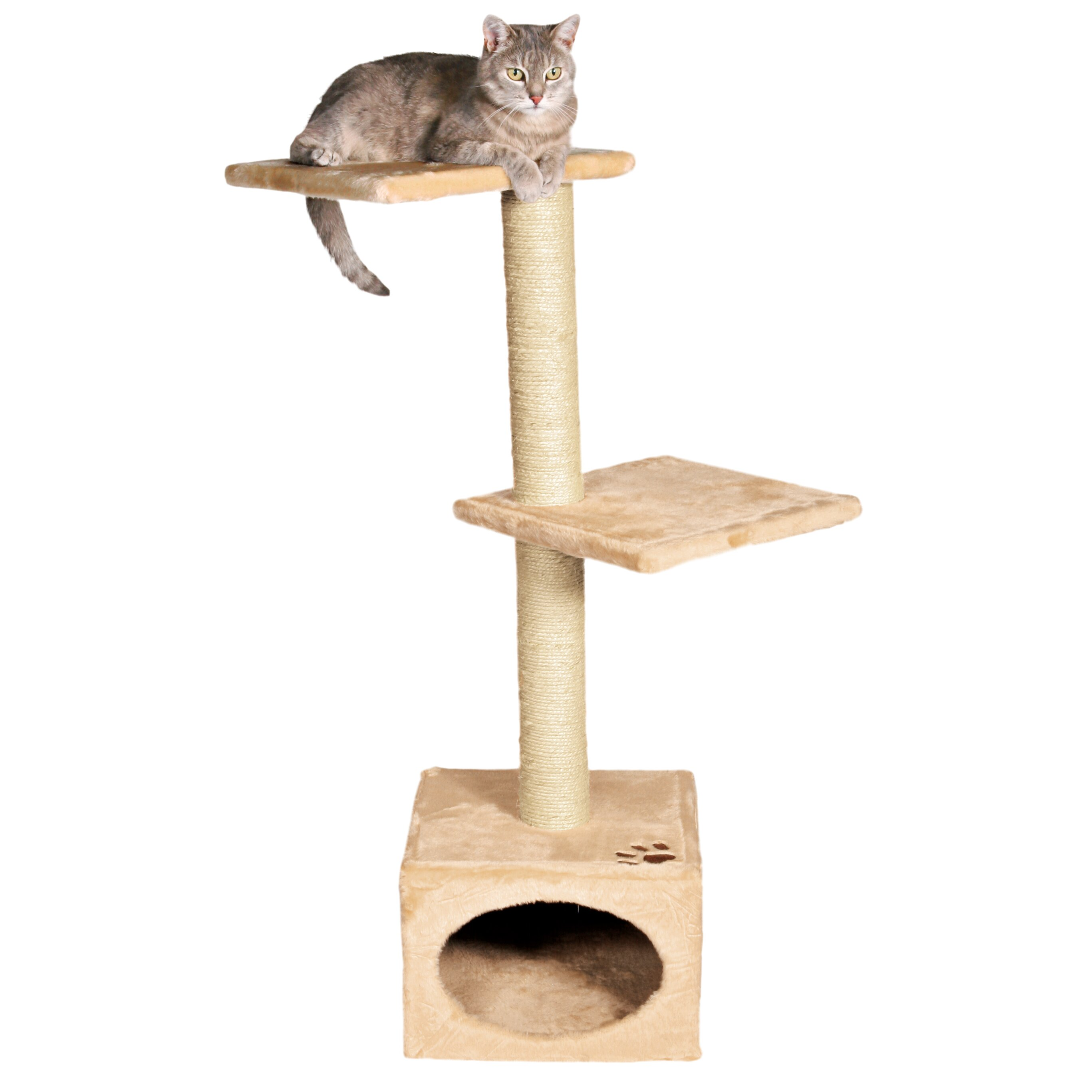 Trixie badalona 43 cat tree reviews wayfair for Pictures of cat trees