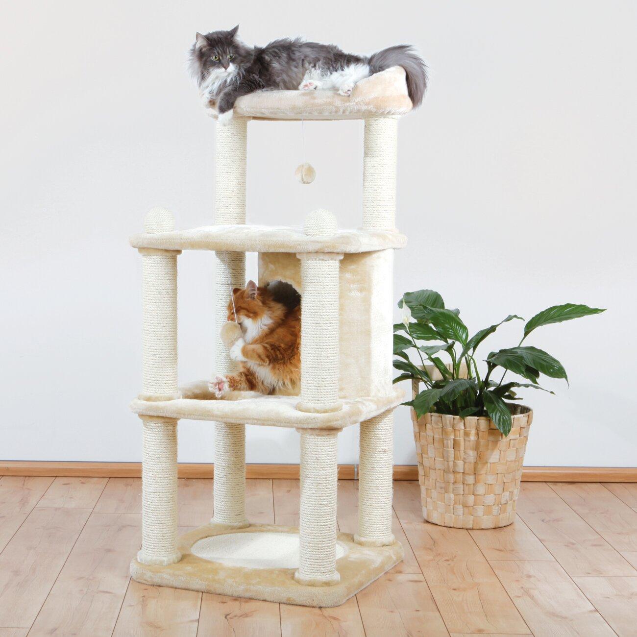 Trixie 55 Quot Belinda Cat Tree Amp Reviews Wayfair