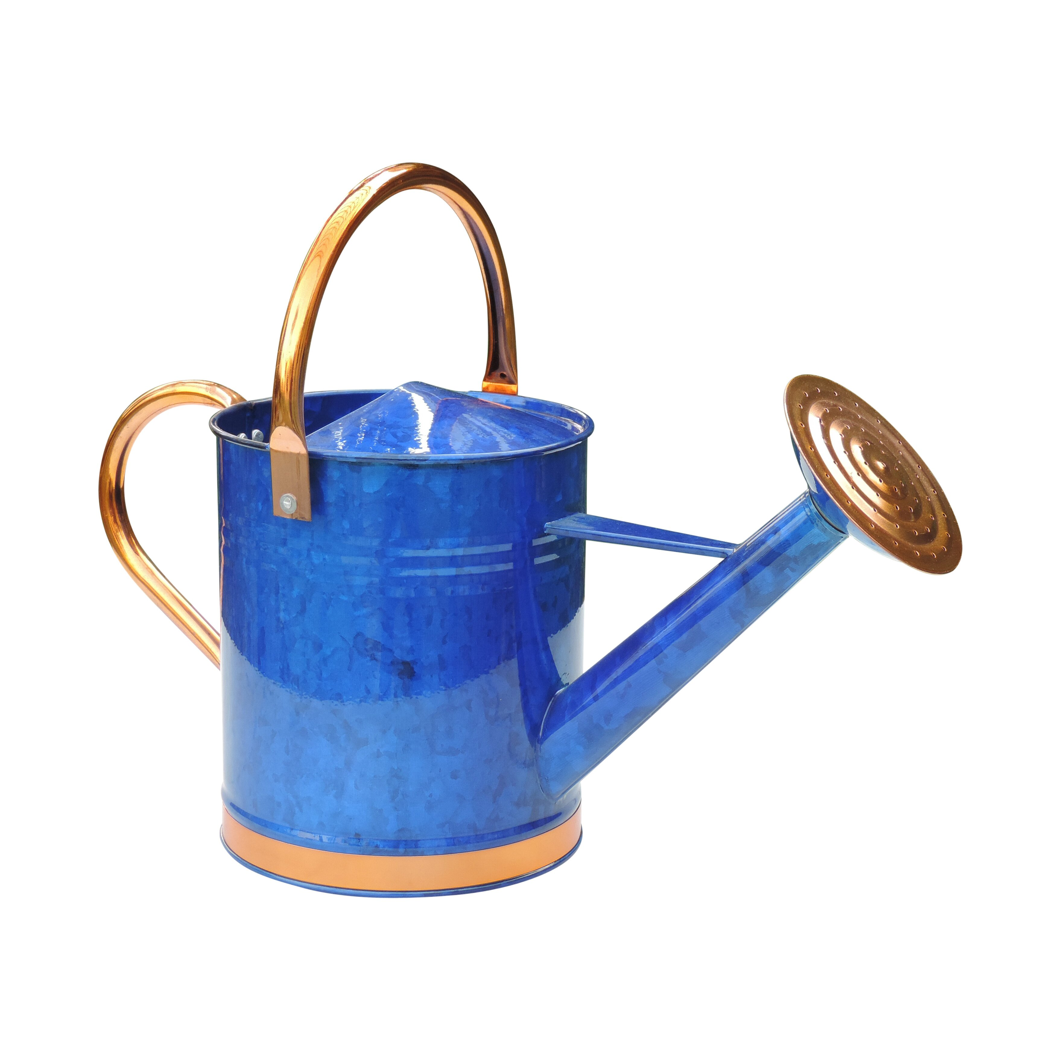 Griffith creek designs deluxe 1 gallon watering can reviews wayfair - Sprinkling cans ...