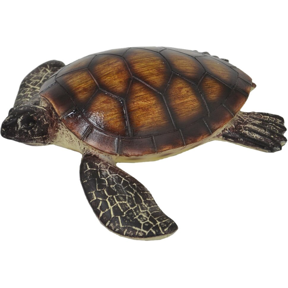 Three Hands Corporation Tortoise Decor Wayfair