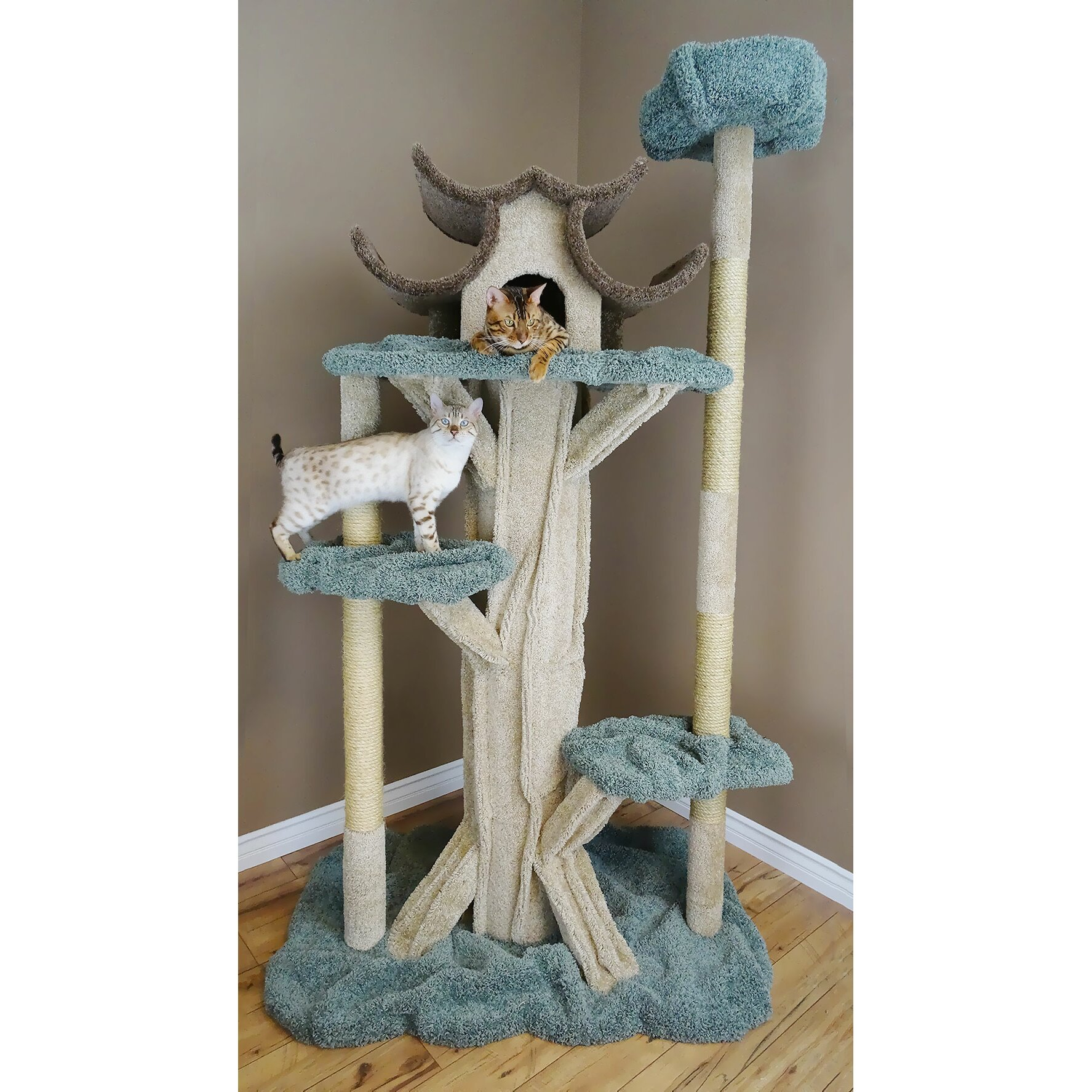 New Cat Condos 84 Quot Premier Tall Cat Tree Amp Reviews Wayfair