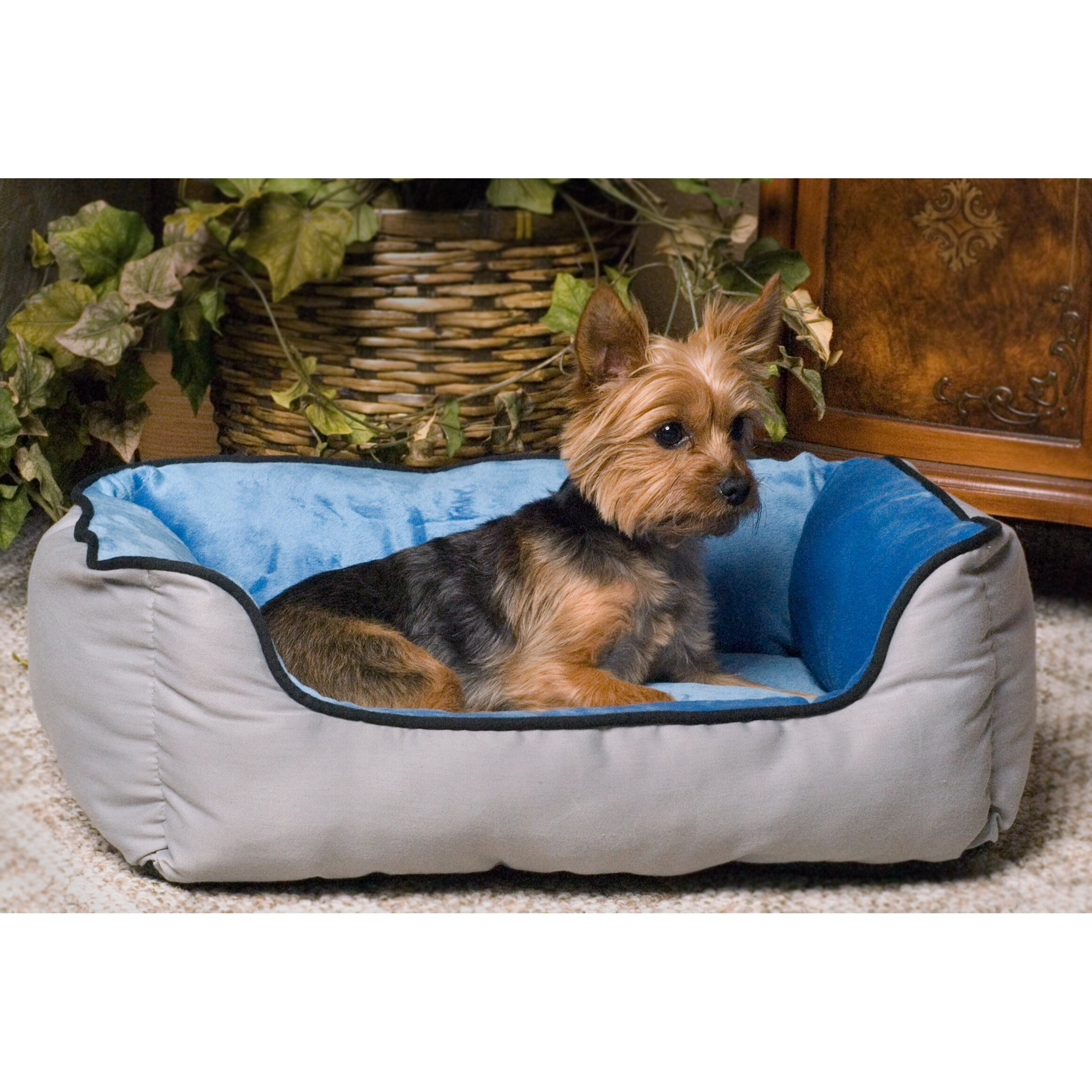 k h manufacturing self warming heated lounge bolster dog bed reviews wayfair. Black Bedroom Furniture Sets. Home Design Ideas