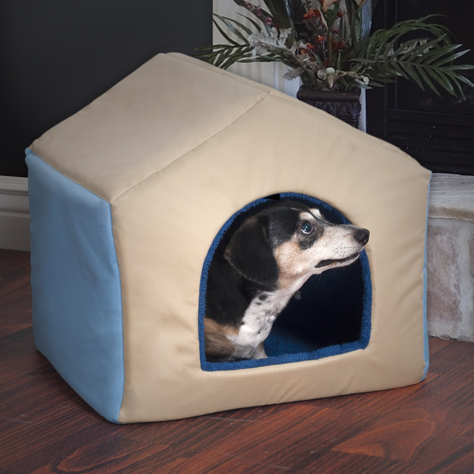 Paw 2 in 1 dog house pet bed reviews wayfair for Dog haus dog beds