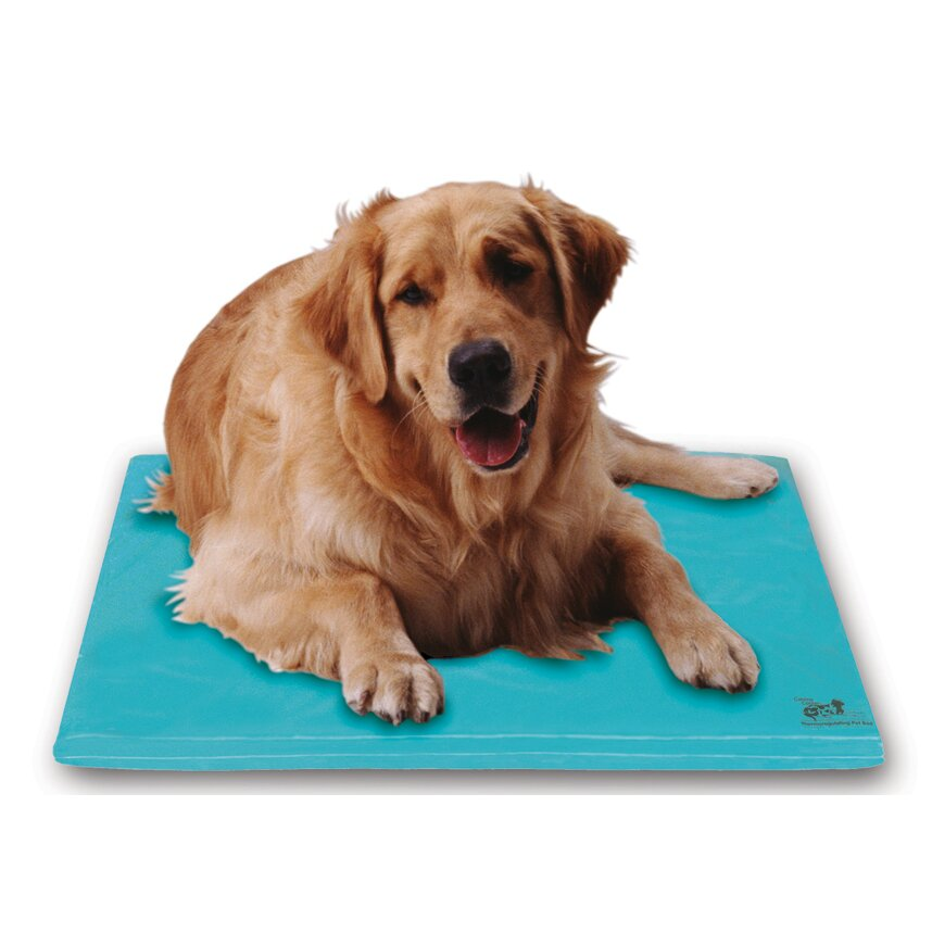 Soothsoft Canine Cooler Dog Mat Amp Reviews Wayfair