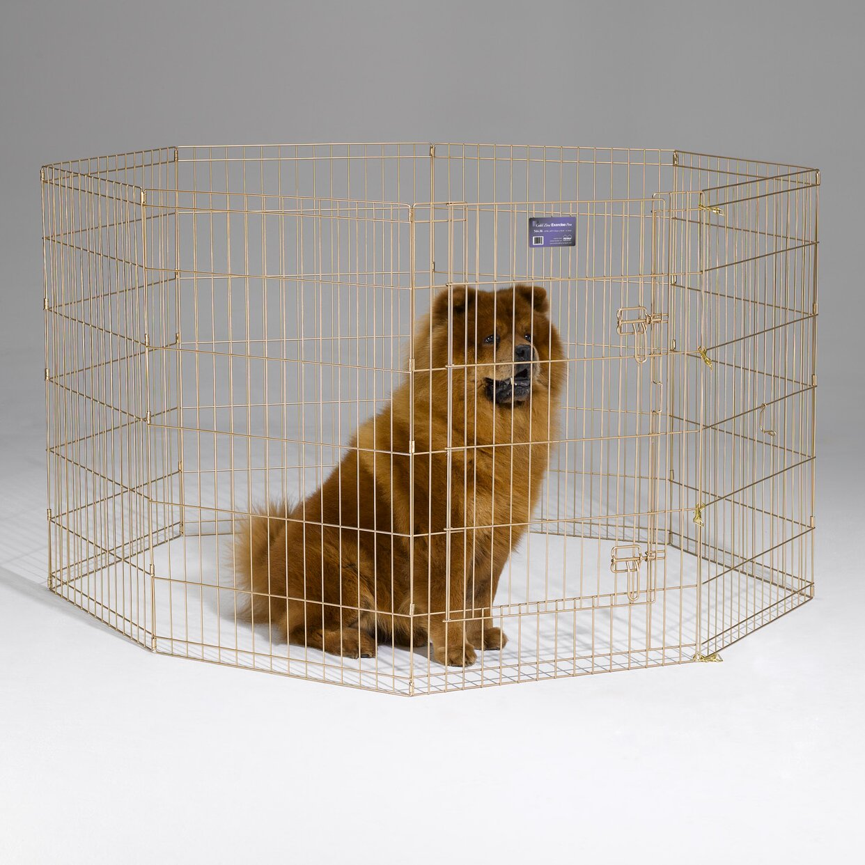 Midwest Homes For Pets Dog Pen