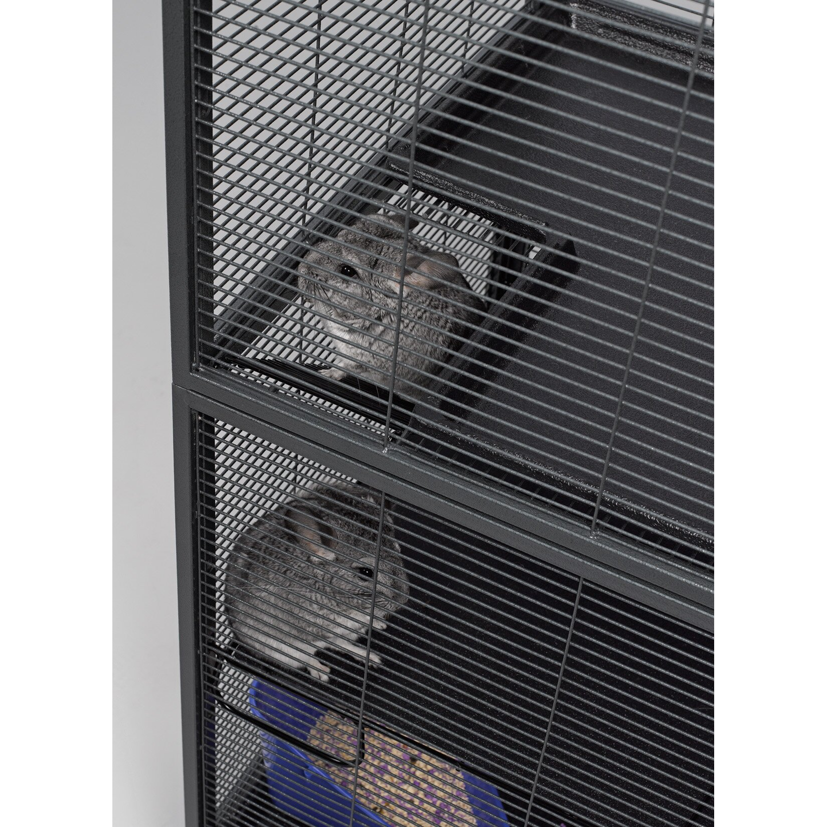 Midwest Homes For Pets Critter Nation Small Animal Double