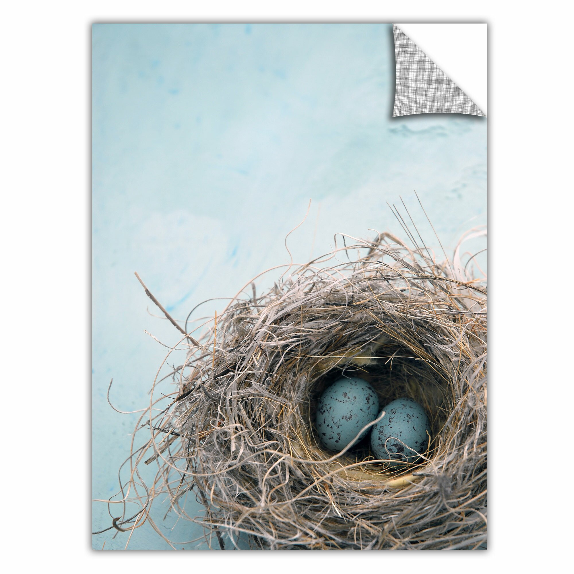 Artwall blue nest by elena ray art appeelz removable wall - Lecteur blue ray mural ...