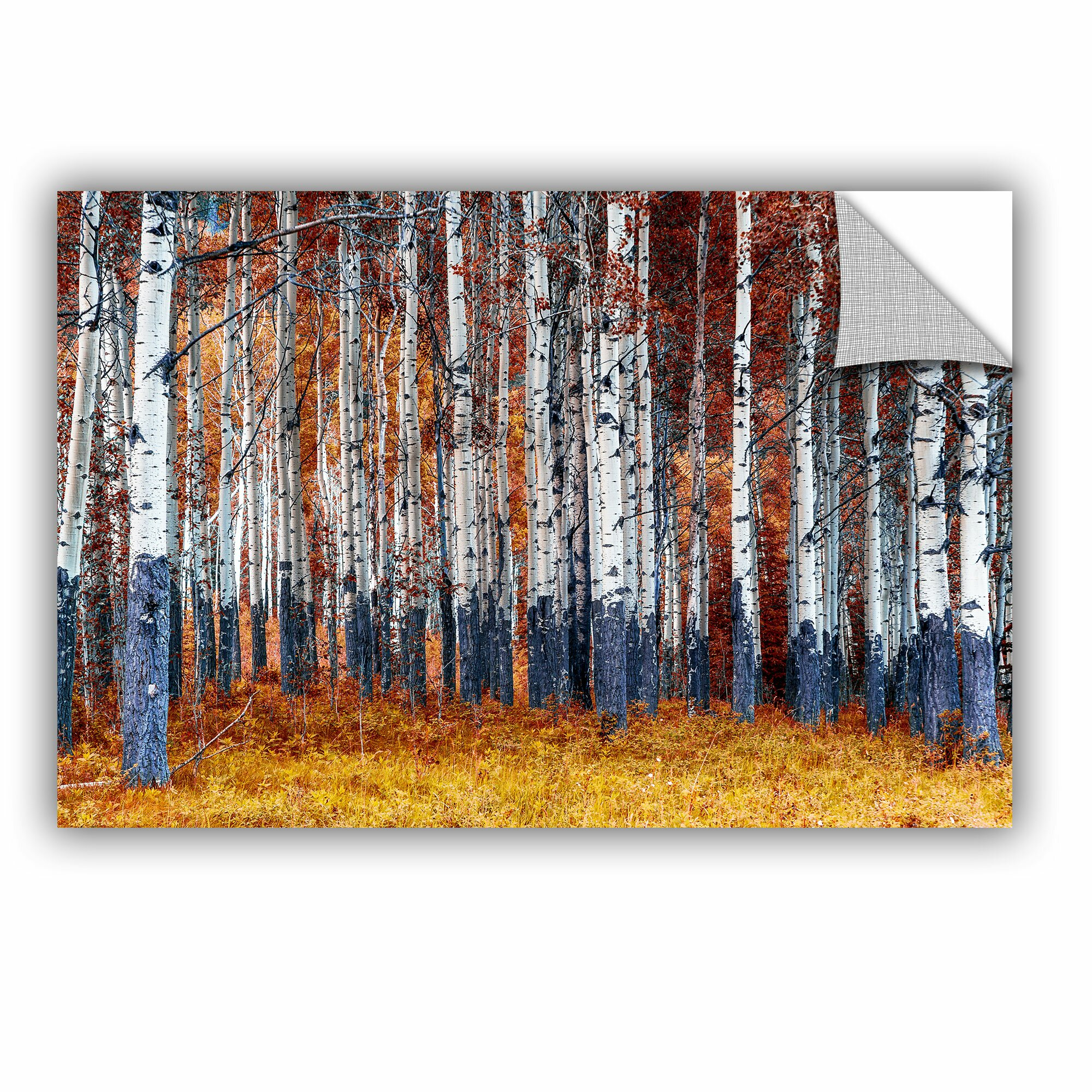 Artwall autumn forest wall mural wayfair for Autumn forest wall mural
