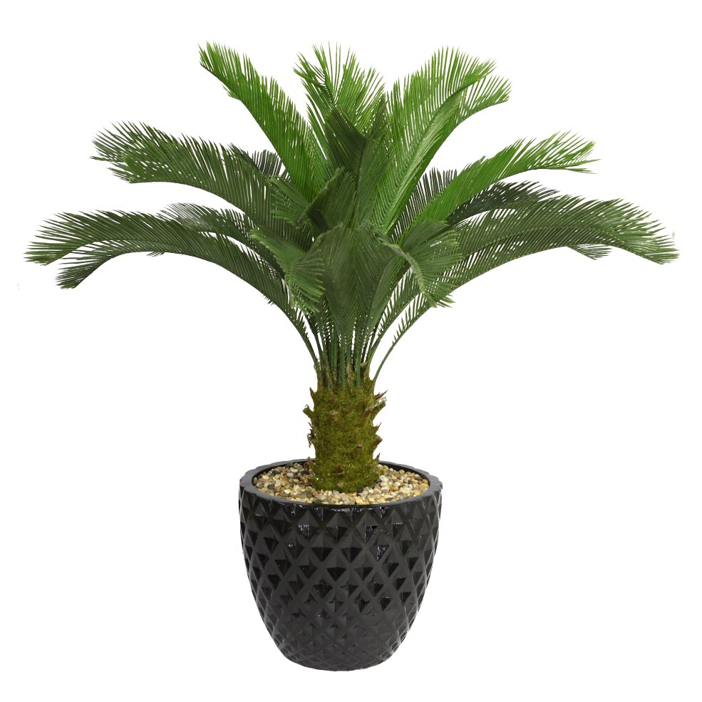 Laura Ashley Home Tall Cycas Palm Floor Tree In Planter