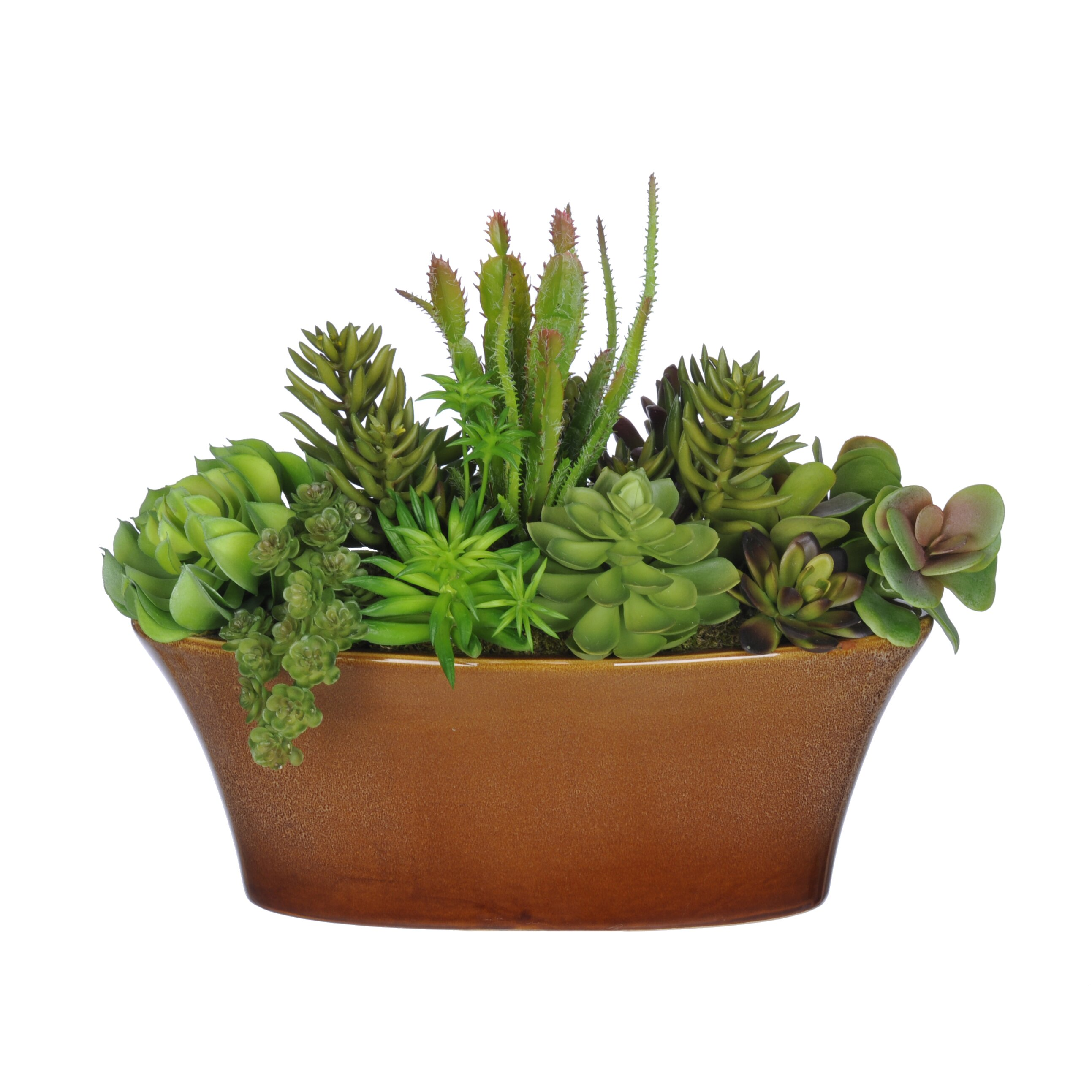 House of silk flowers artificial succulent desk top plant for Decorative plants for garden