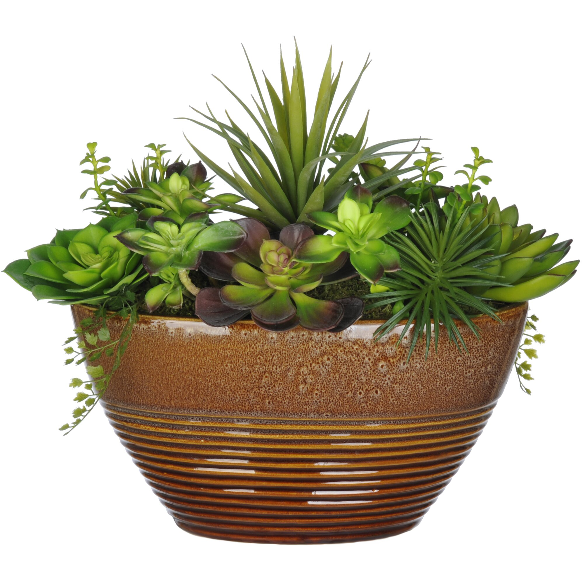 House Of Silk Flowers Artificial Succulent Desk Top Plant