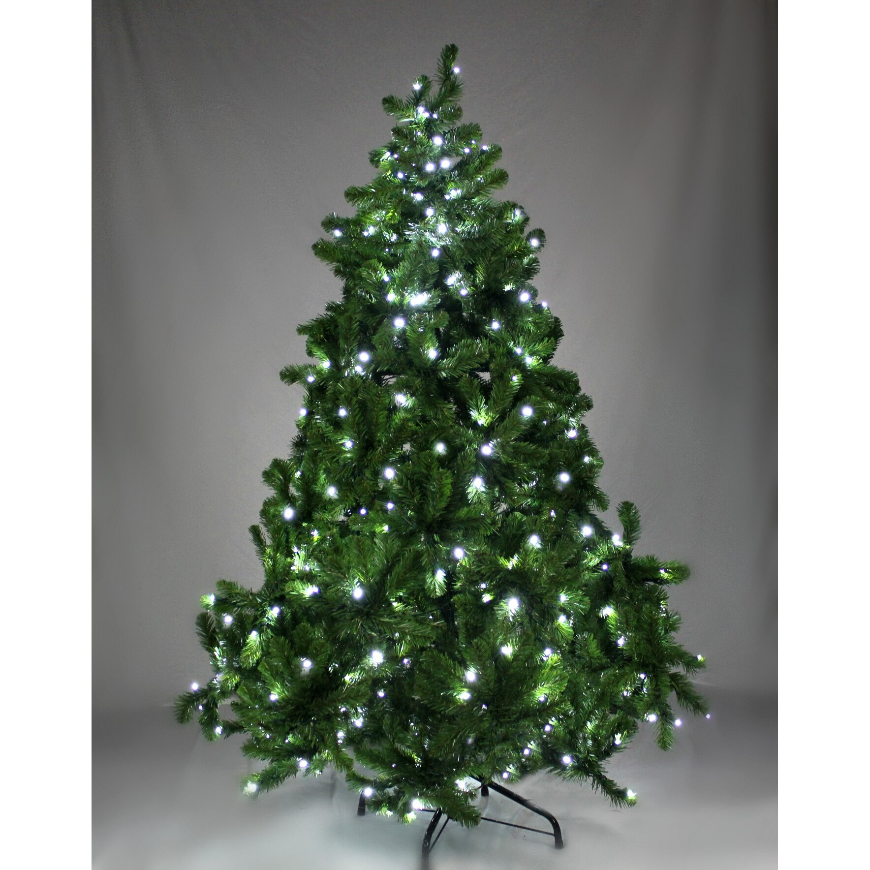 Queens Of Christmas 6' Pre-Lit Sequoia Tree With Pure
