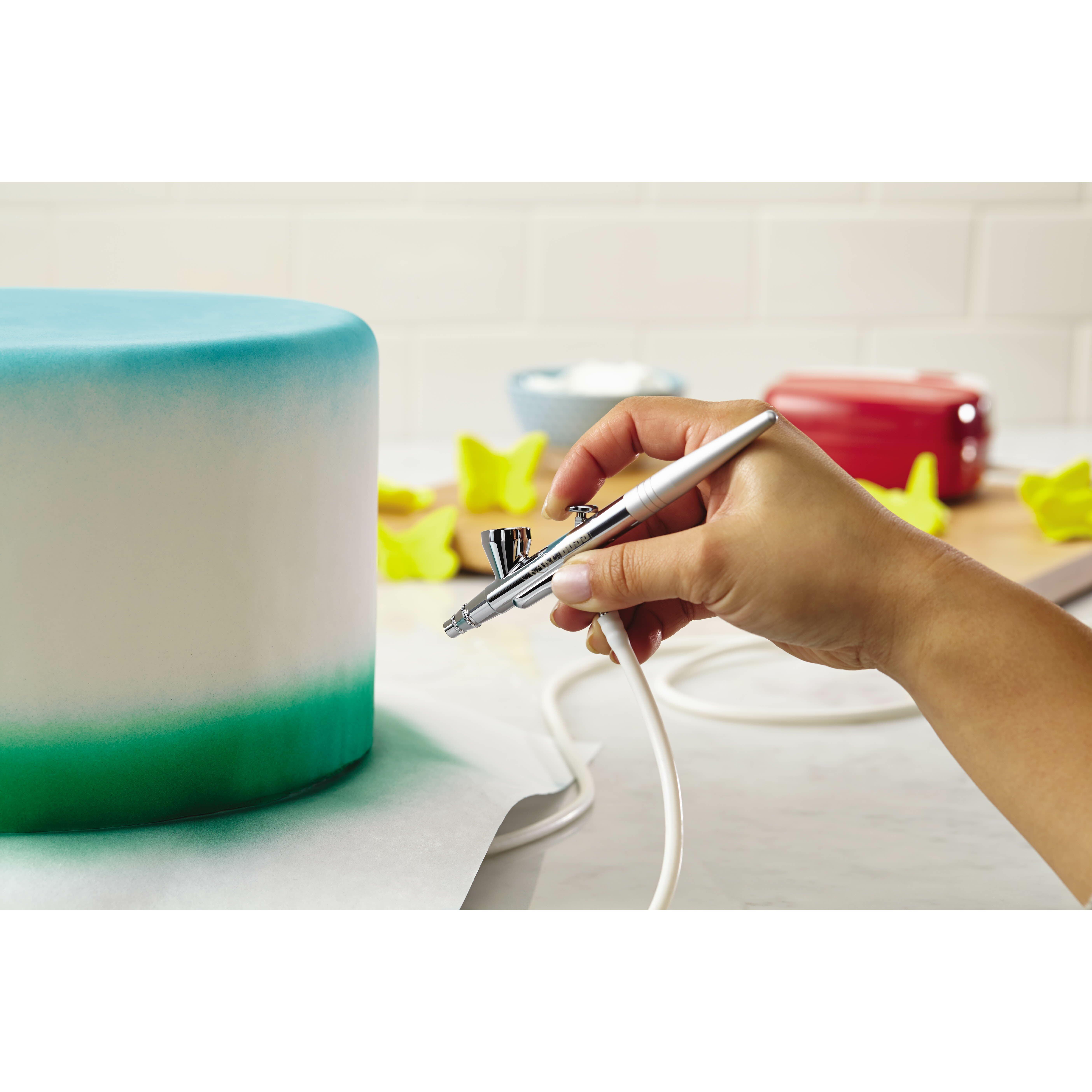 Cake Boss Airbrushing Kit & Reviews Wayfair