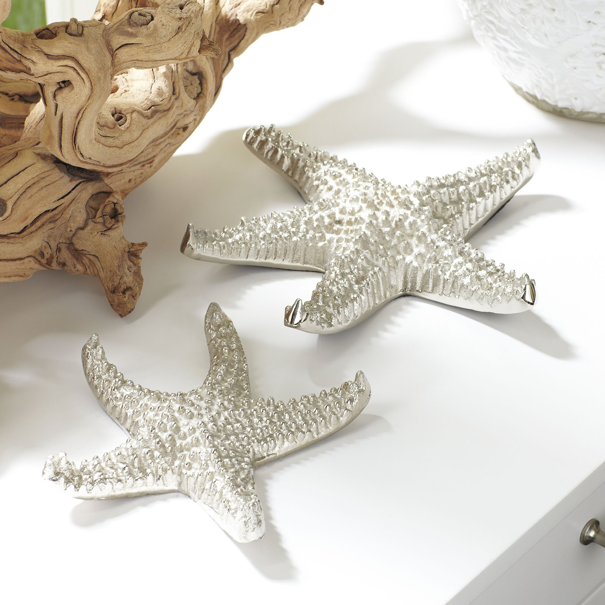 birch lane sea star decor reviews