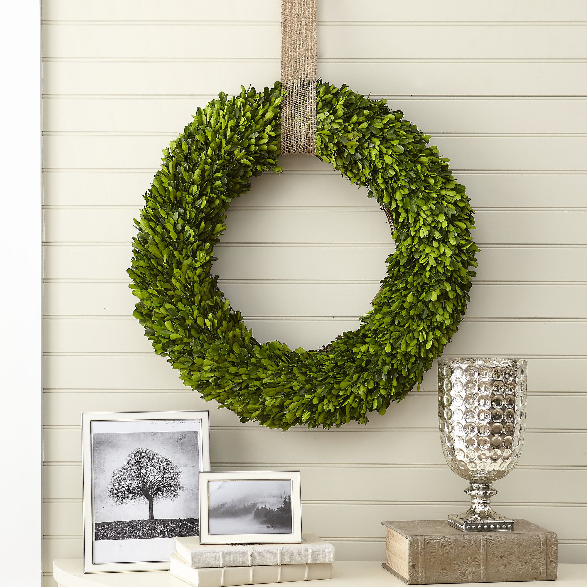 Birch lane preserved boxwood wreath amp reviews wayfair