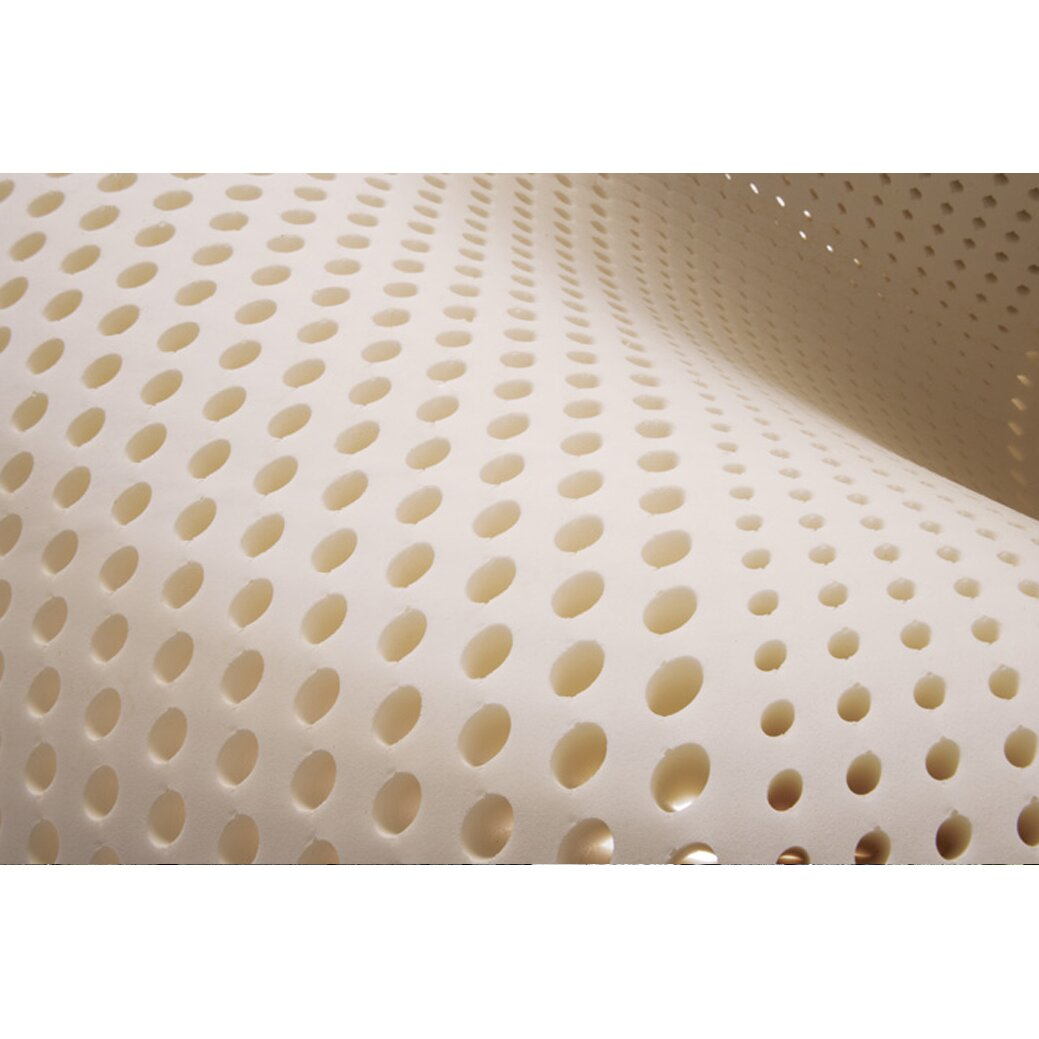 Plush Beds Mobileplush 8 Latex Foam Mattress Reviews