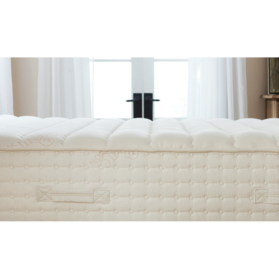 Plush Beds Luxury Bliss 12 Latex Foam Mattress Wayfair