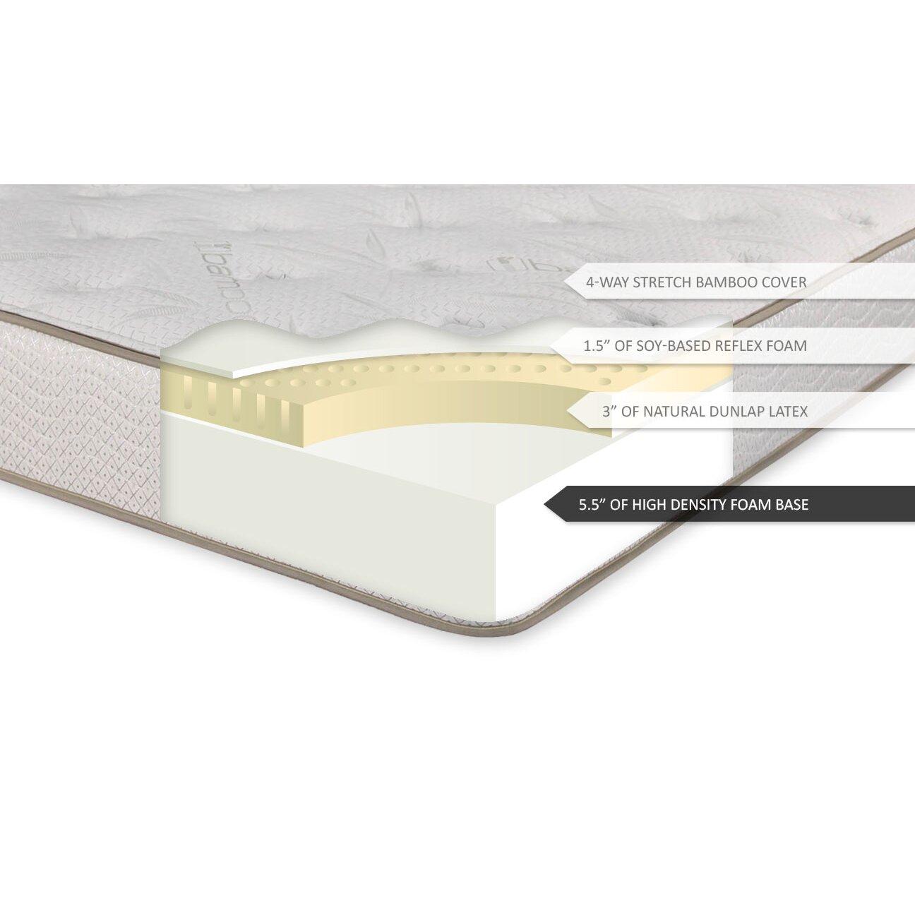 Brooklyn Bedding Ultimate Dreams 10 Latex Foam Mattress Reviews Wayfair