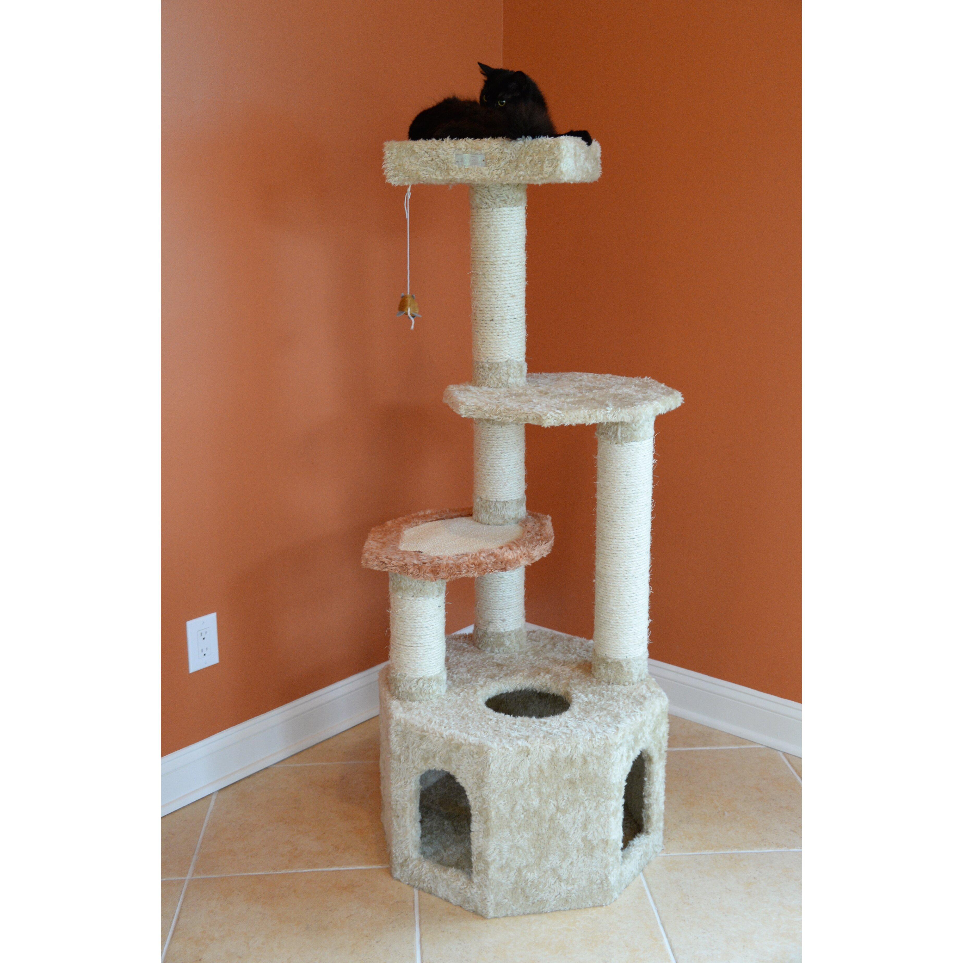 domestic savannah cat