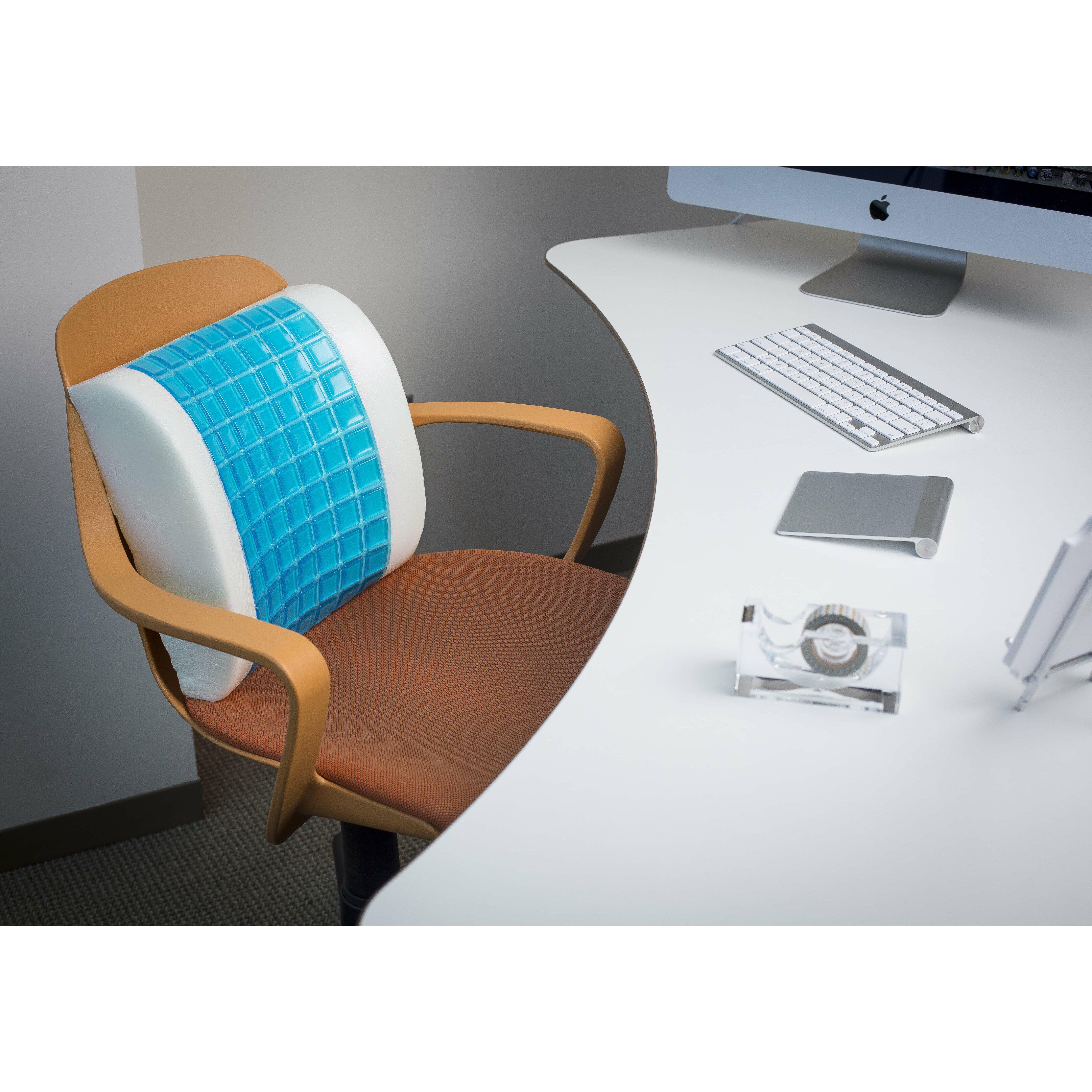 Modernhome Gel Memory Foam Lumbar Pillow & Reviews Wayfair