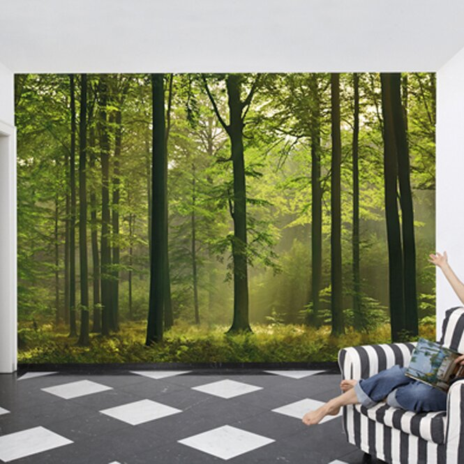 Zipcode design autumn forest wall mural reviews wayfair for Autumn forest wall mural