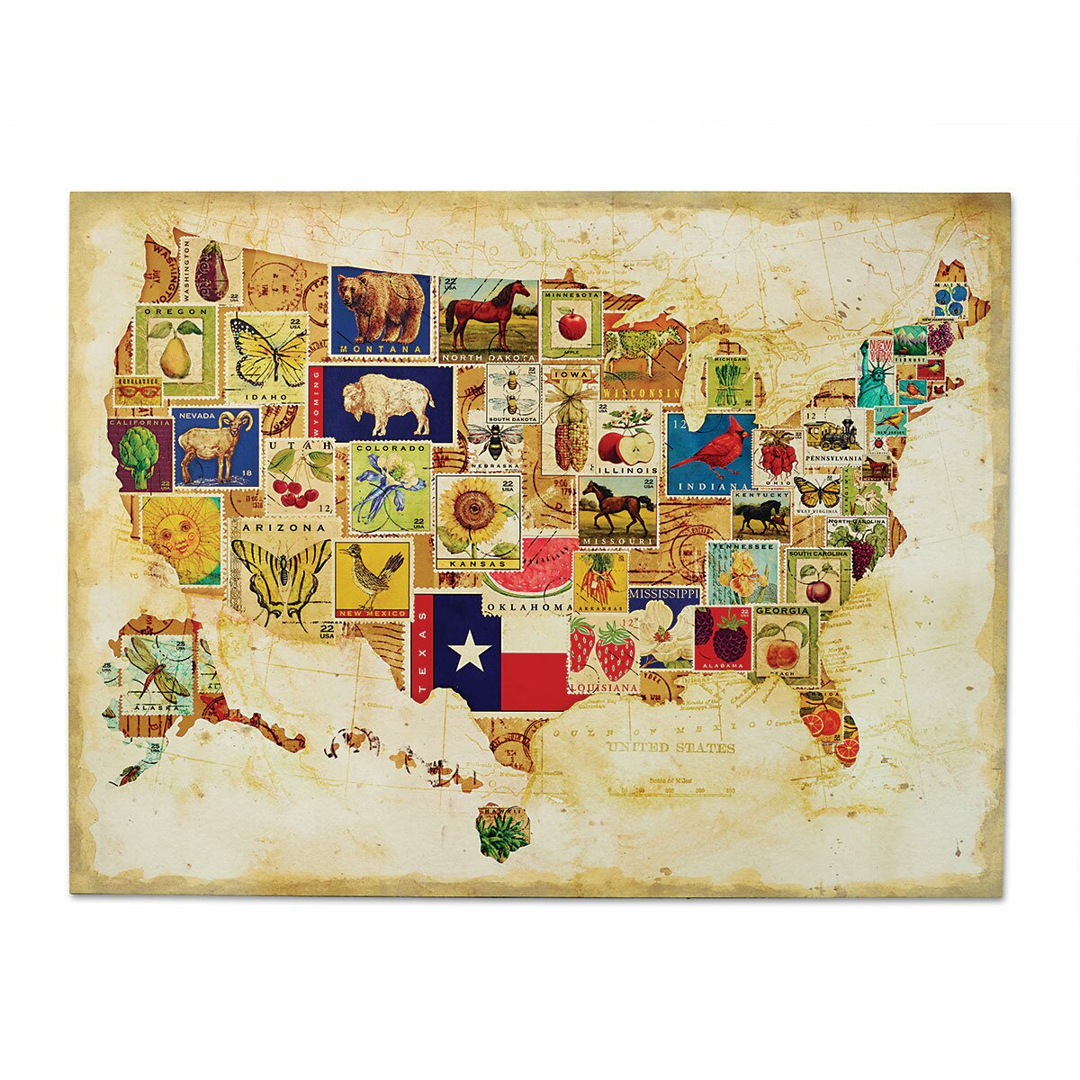 DEMDACO American Backroads US Map Graphic Art & Reviews