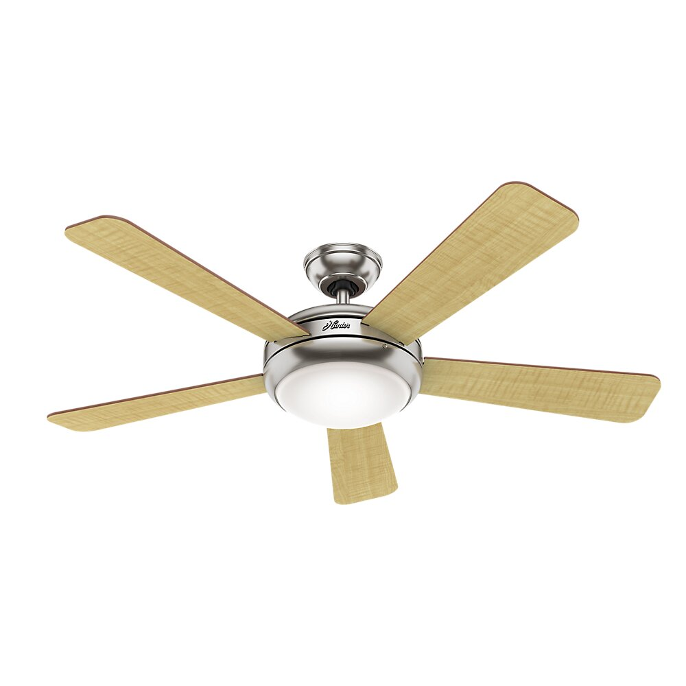 Ceiling Fan Blades : Hunter fan quot palermo blade ceiling reviews wayfair