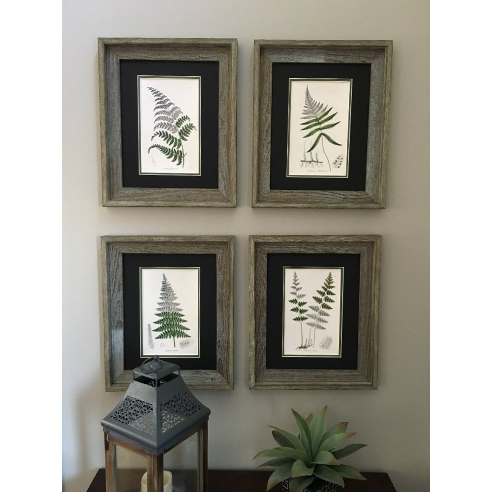 Floral Home Decor Vintage Botanical Fern 4 Piece Framed