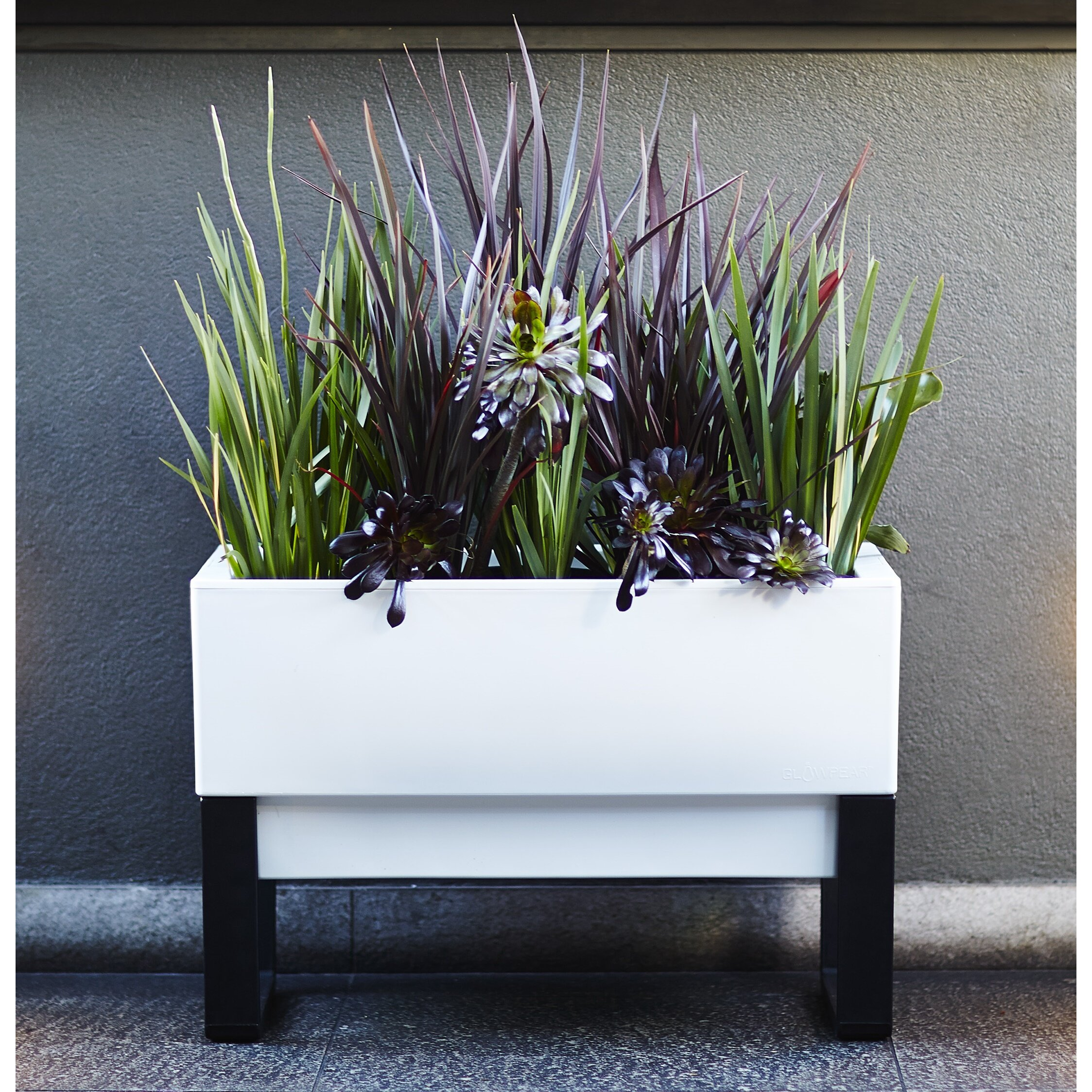 Glowpear rectangular planter box reviews wayfair for Wayfair garden box
