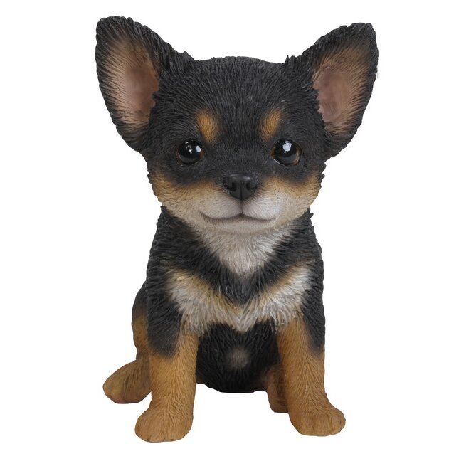 black and brown chihuahua puppies hi line gift ltd black and brown chihuahua puppy statue 4036