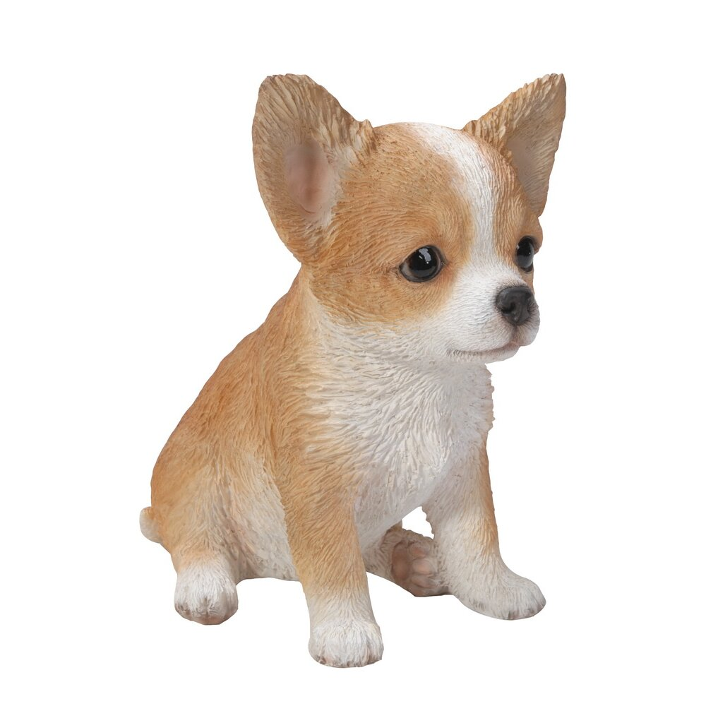 Hi-Line Gift Ltd. Brown and White Chihuahua Puppy Statue ...
