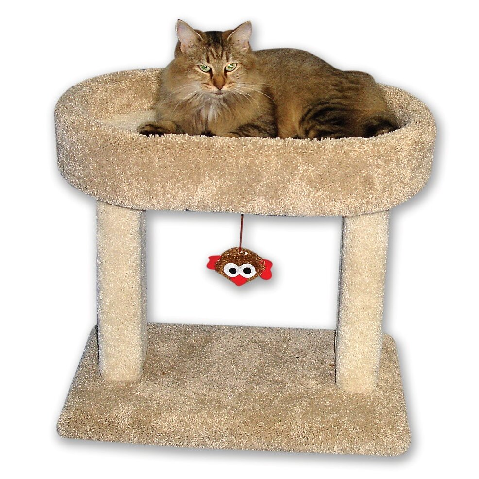 "BeatrisePetProducts 21"" Kitty Cradle Cat Condo & Reviews 