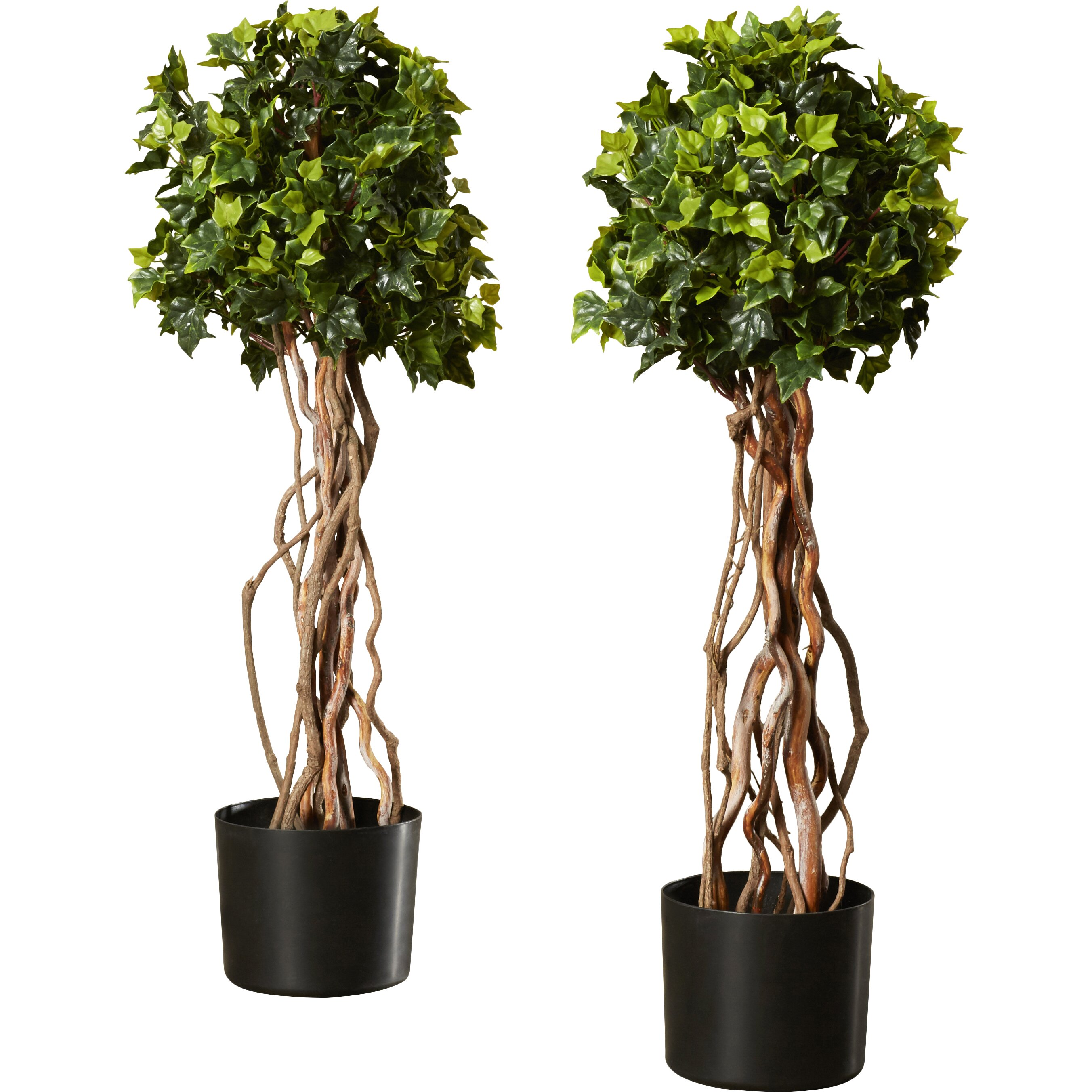 darby home co artificial english ivy topiary tree in pot. Black Bedroom Furniture Sets. Home Design Ideas