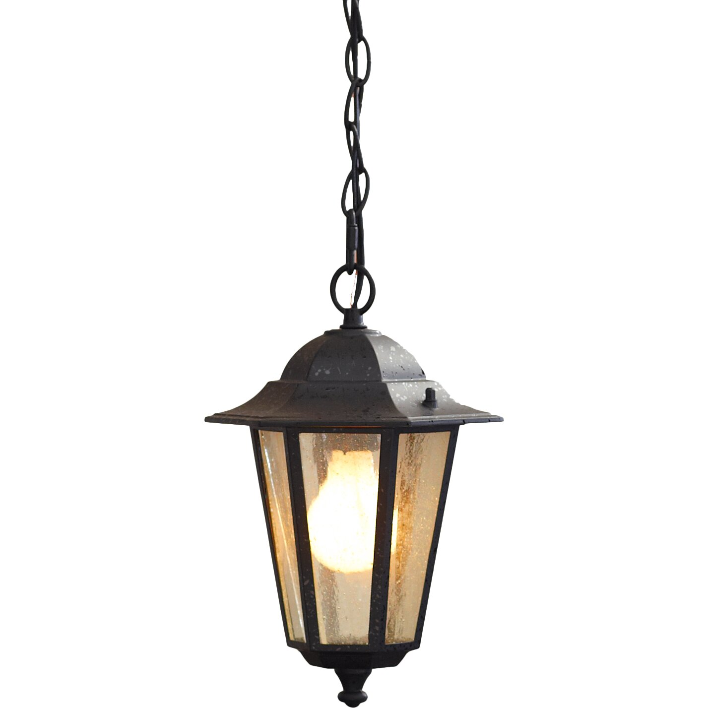 Alcott hill mayer 1 light outdoor hanging lantern for Outdoor hanging porch lights