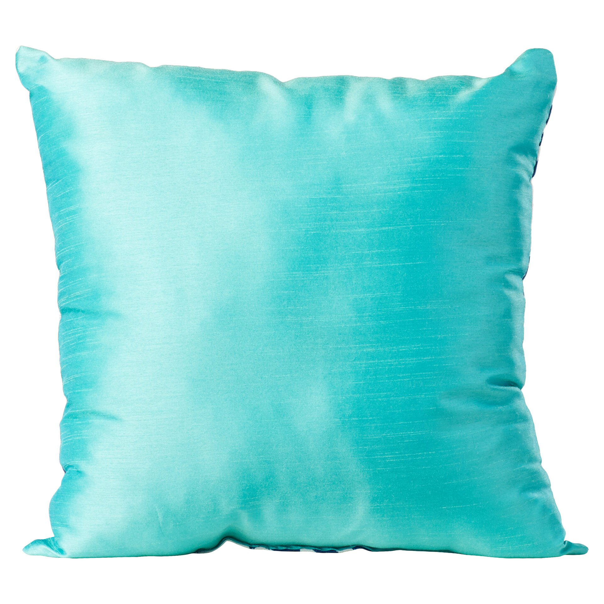 Charlton Home Fraley Throw Pillow & Reviews Wayfair.ca