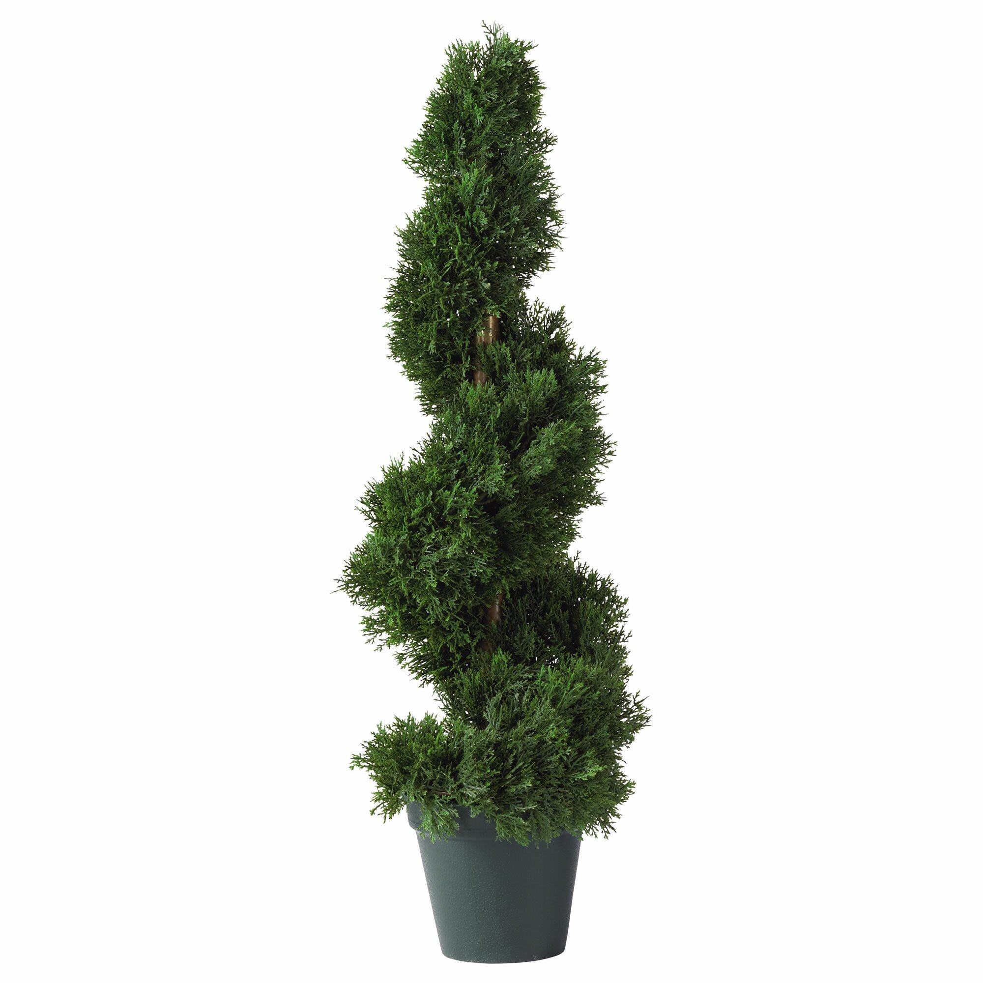charlton home cedar spiral round tapered topiary floor