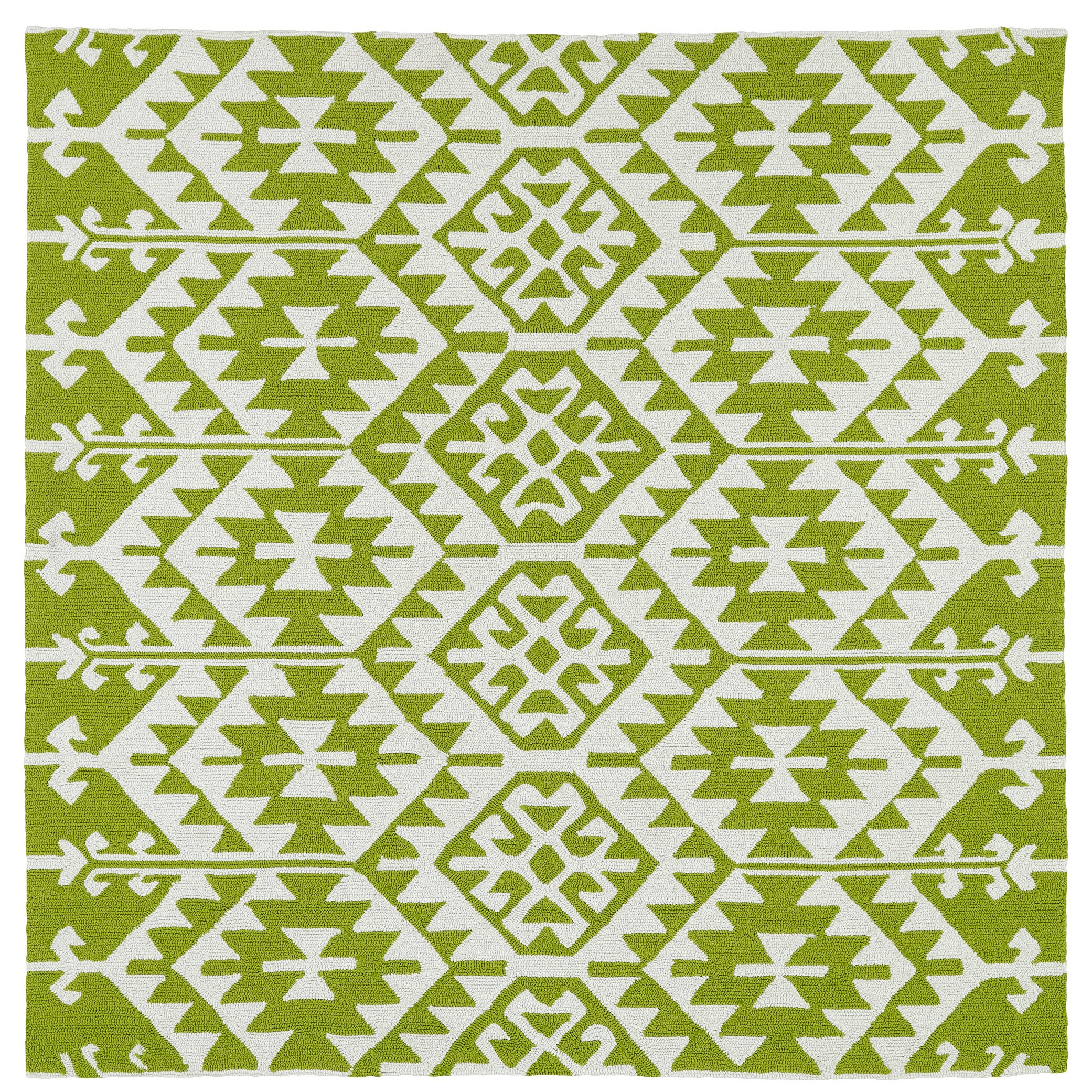 Lime Green Area Rug: Varick Gallery Lime Green/Ivory Indoor/Outdoor Area Rug