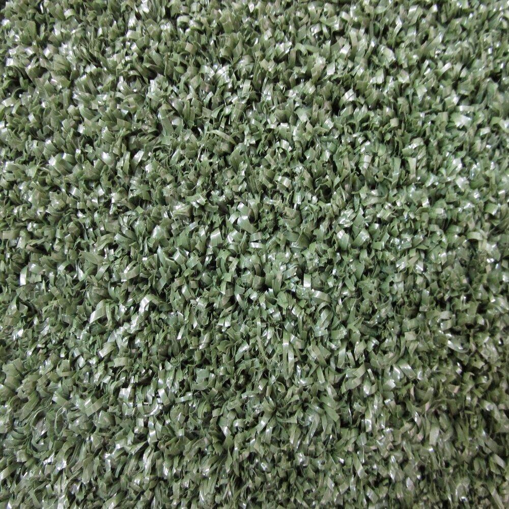 Olive Green 8x10 Area Rug: Beaulieu Hand-Tufted Olive Green Indoor/Outdoor Area Rug