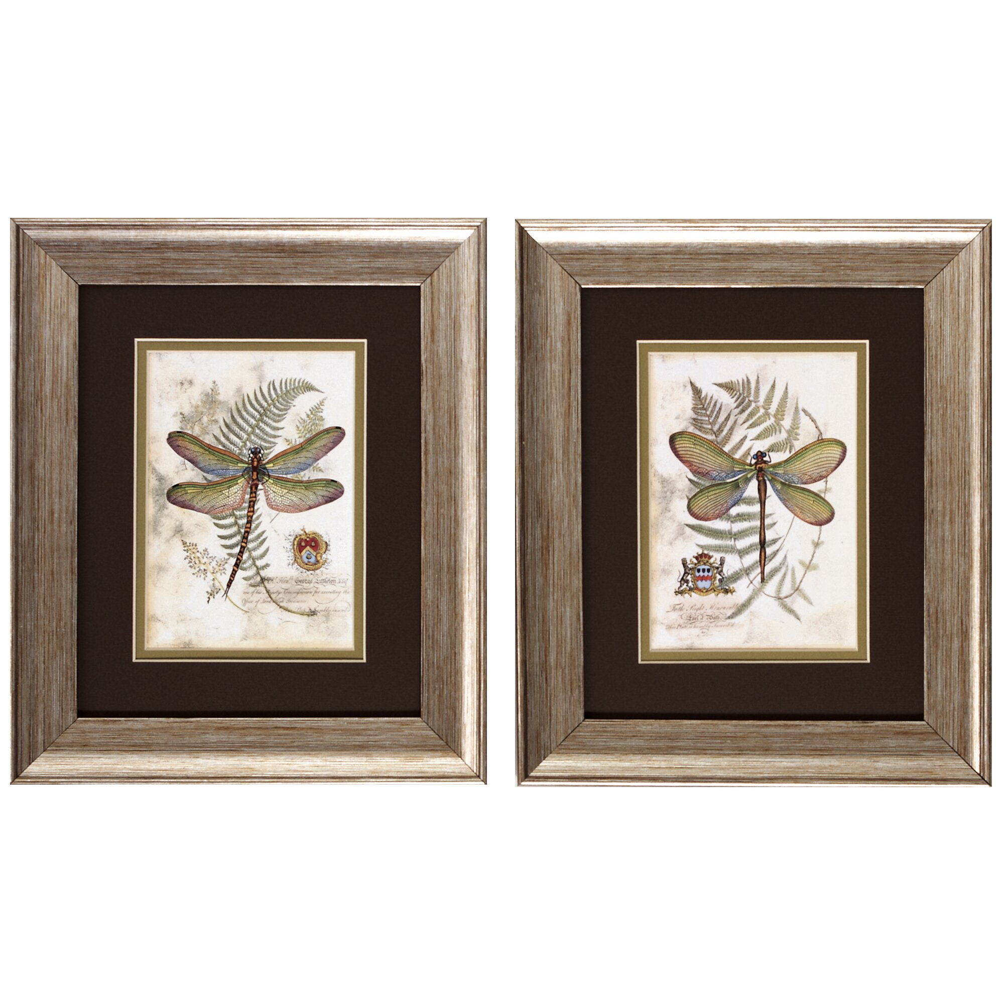 August grove dragonfly i and ii framed painting print for Dragonfly wall art
