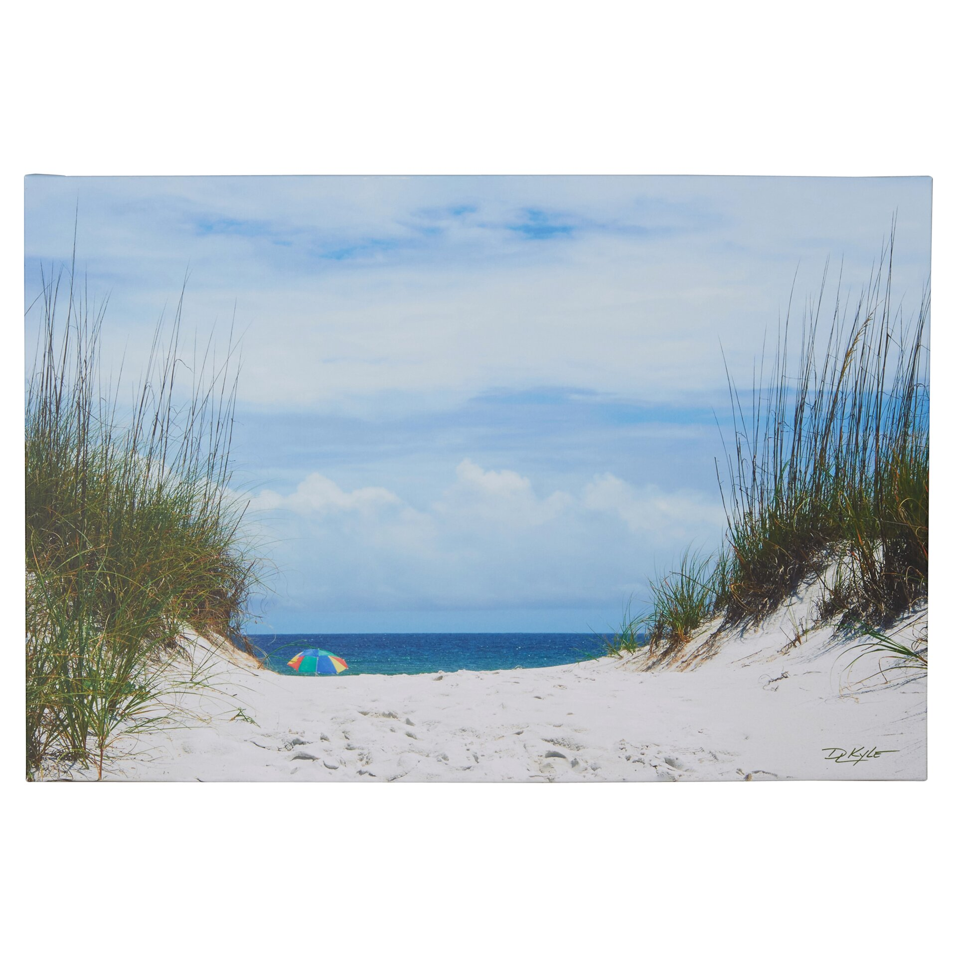 Beachcrest Home Ocean Path Photographic Print On Wrapped