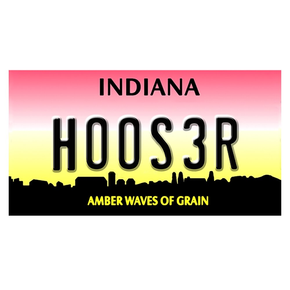 Indiana License Plate' Textual Art by Picture it on Canvas