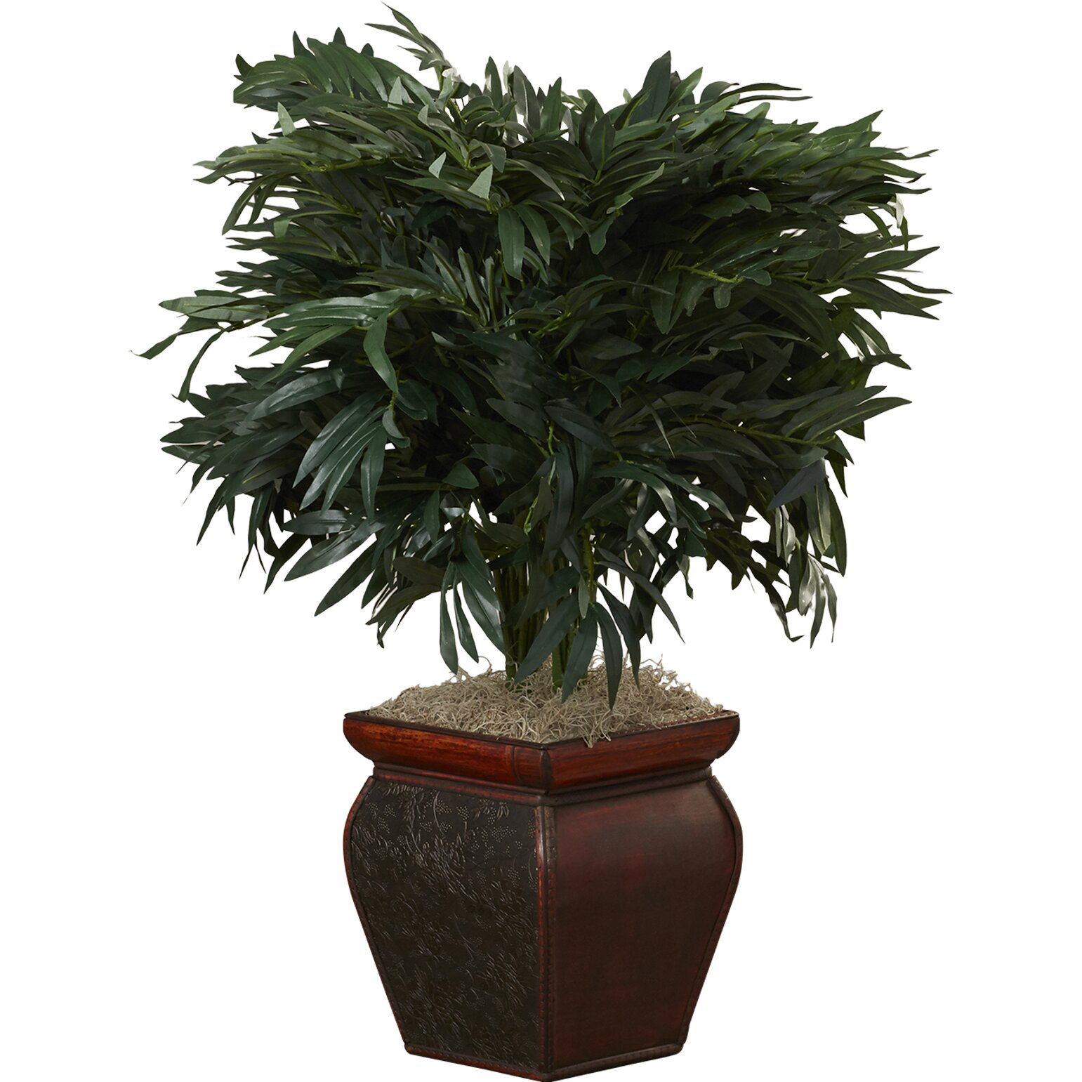 Bungalow Rose Tilburg Double Bamboo Palm Floor Plant In