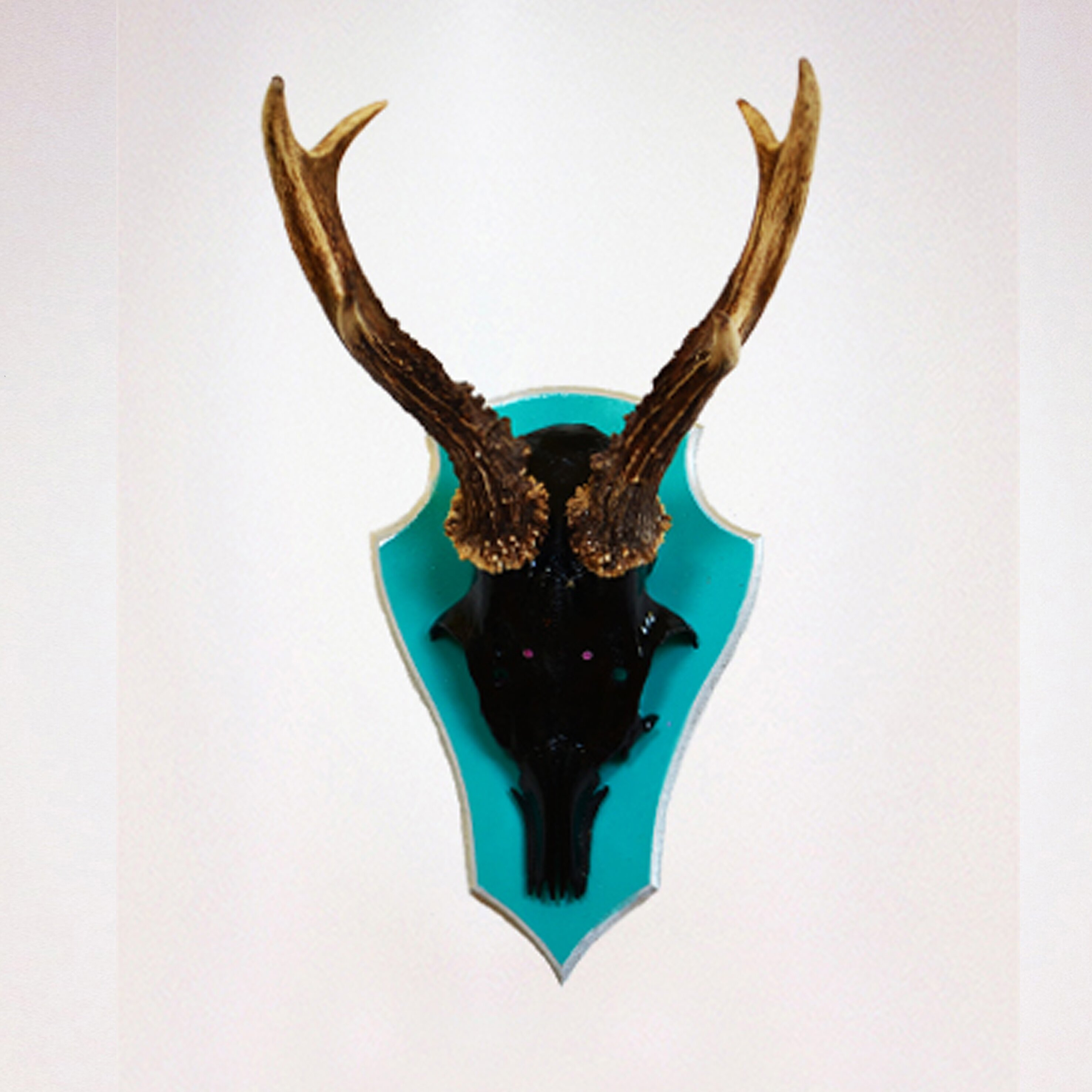 Heartelier verei antlers wall d cor wayfair uk for Antlers decoration