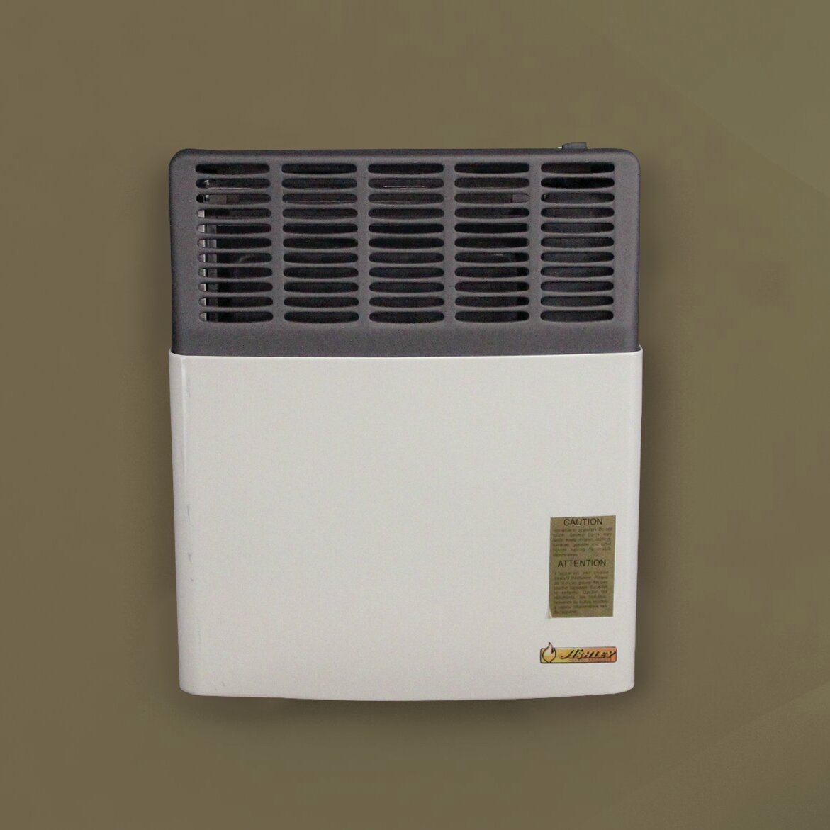 Ashley Hearth 11,000 BTU LP Gas Direct Vent Heater | Wayfair